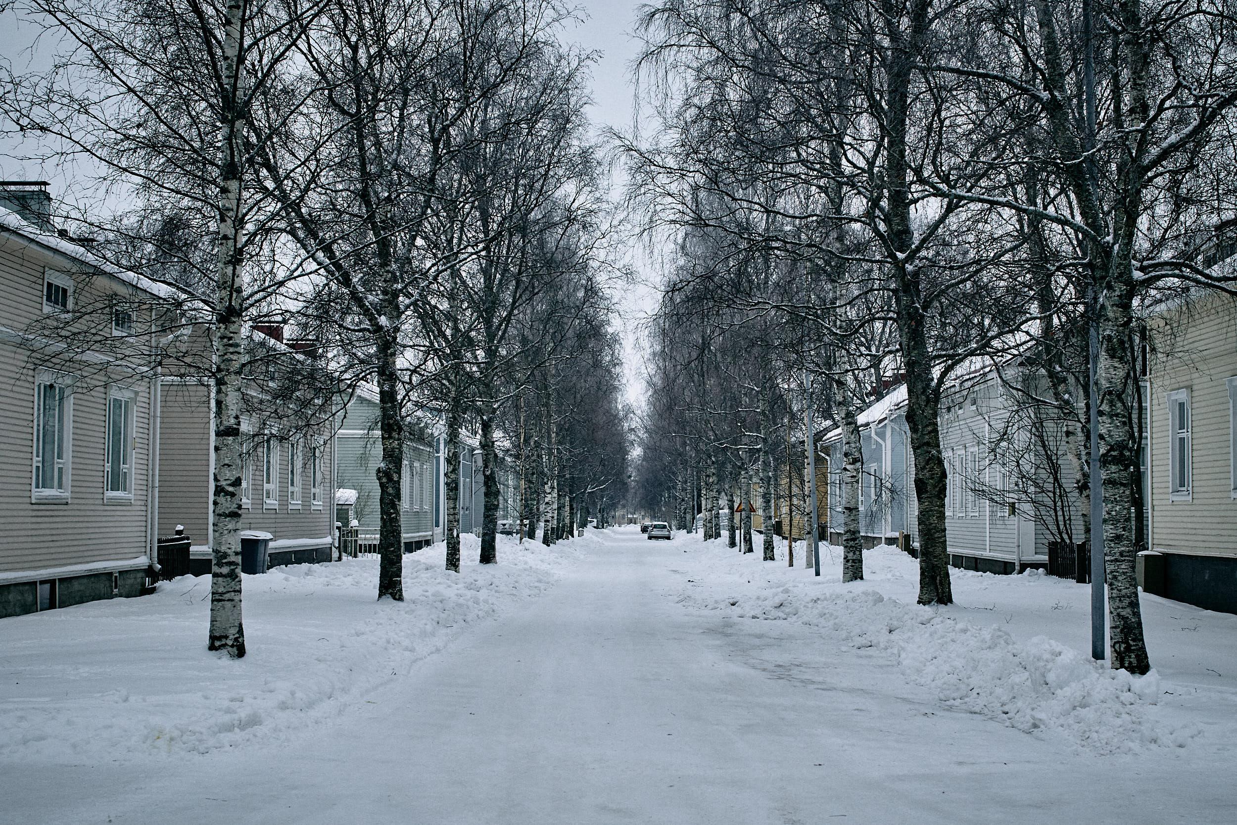 35 mm - 2019-01-05 11.31.51 - Oulu City.jpg