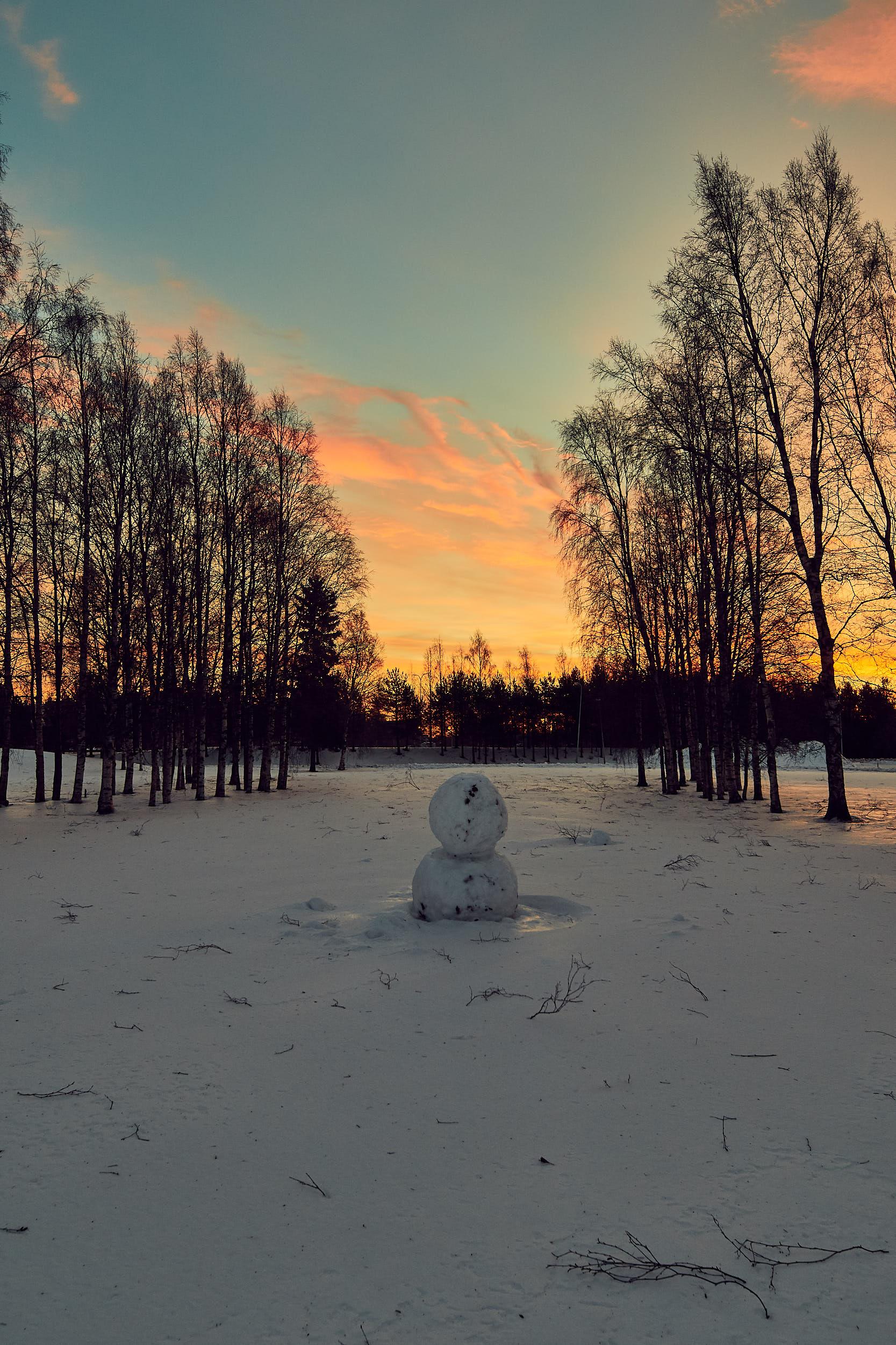 15 mm - 2019-01-13 09.48.41 - Oulu Week 2 Mix.jpg