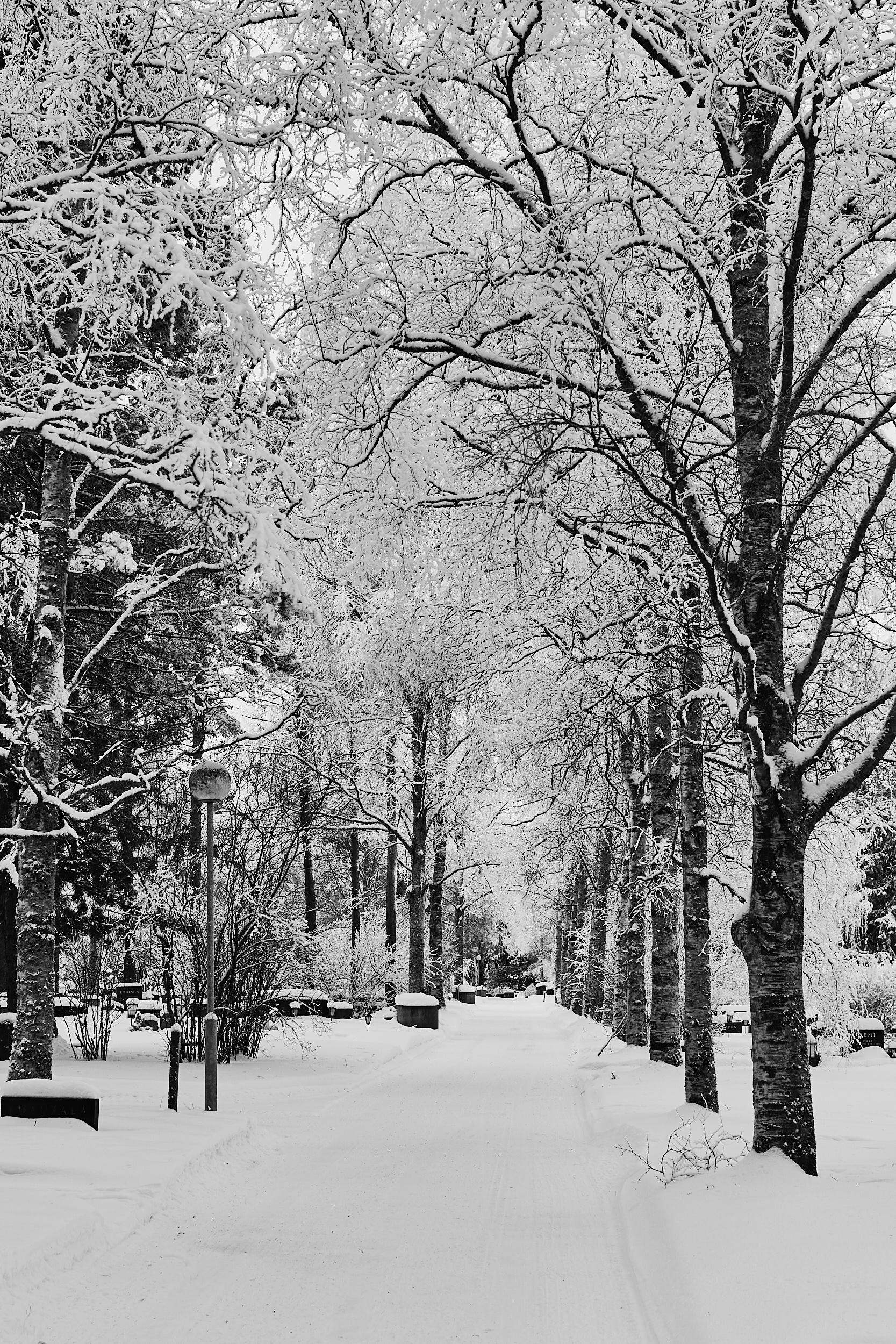 35 mm - 2019-01-24 13.04.42 - Oulu Week 4 Mix.jpg