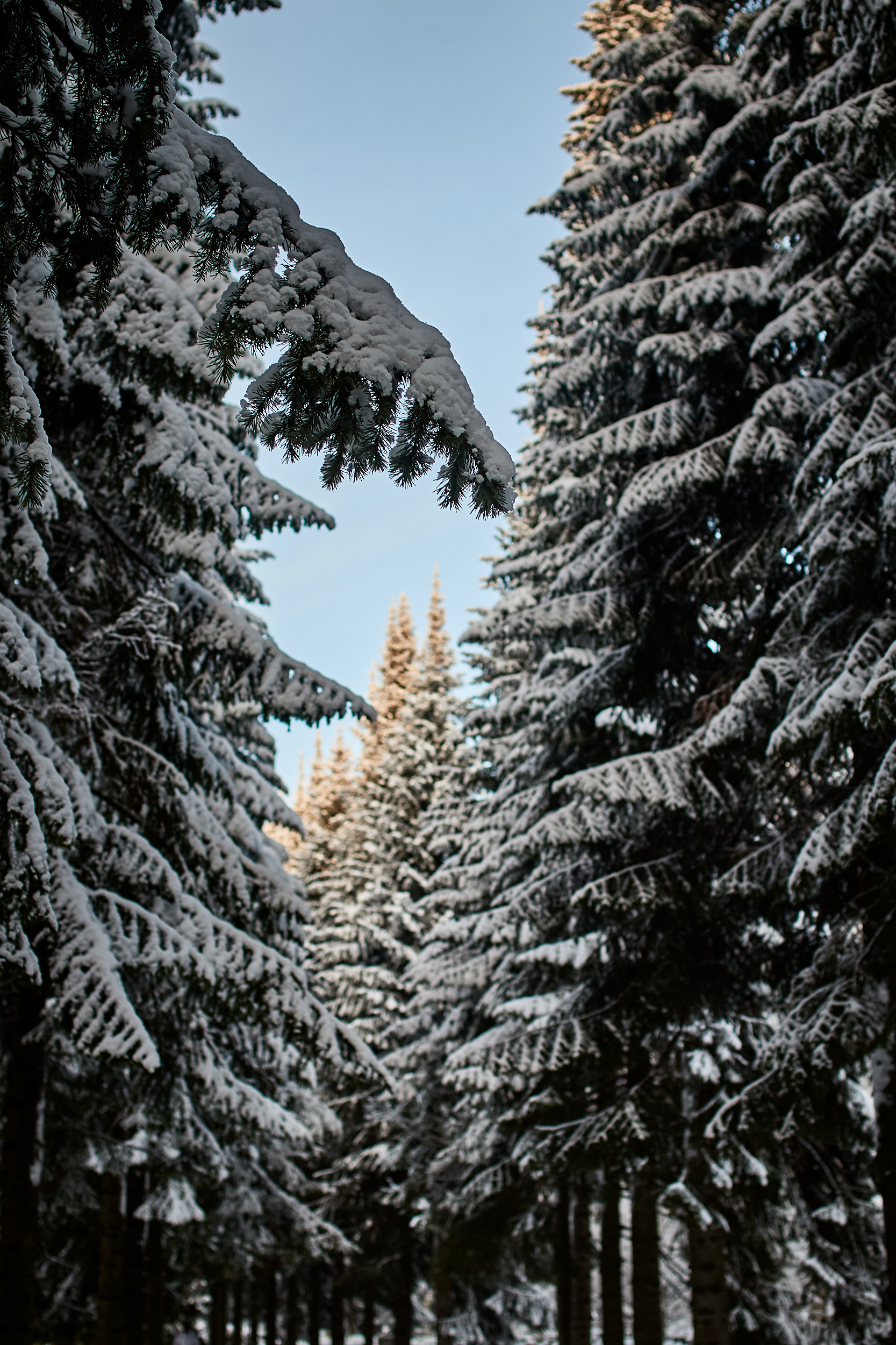 35 mm - 2019-01-24 13.15.36 - Oulu Week 4 Mix.jpg
