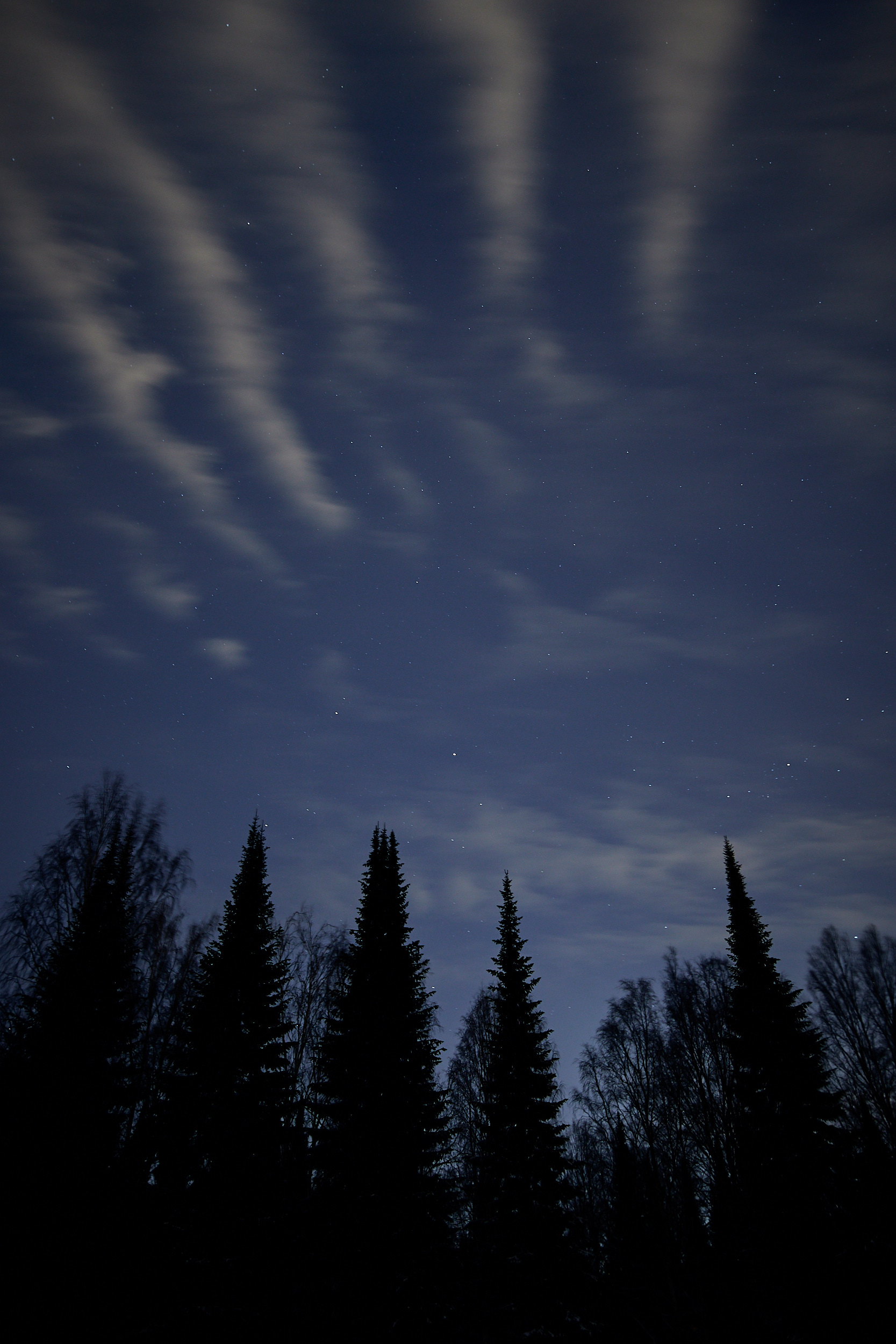 15 mm - 2019-03-12 02.14.14 - Oulu Marvin Timo.jpg