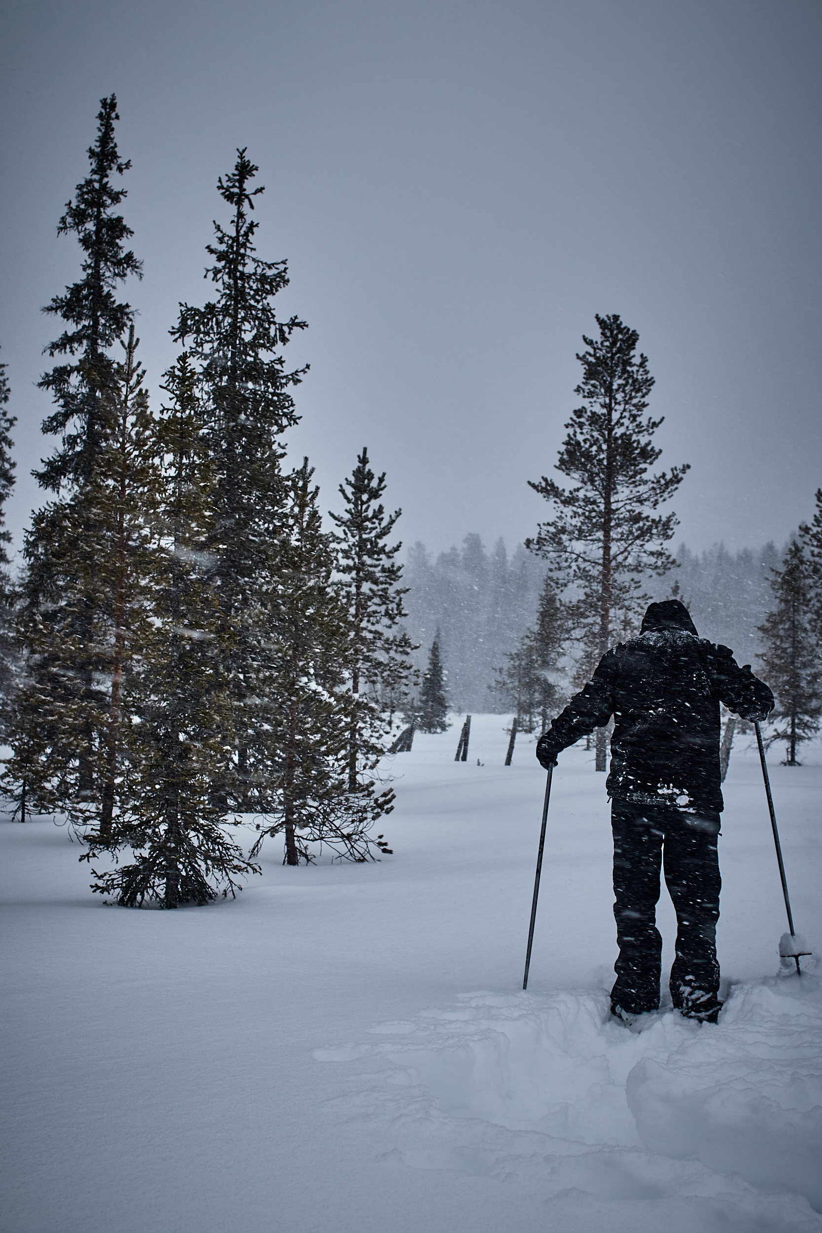 35 mm - 2019-03-09 16.43.48 - Oulu Marvin Timo.jpg