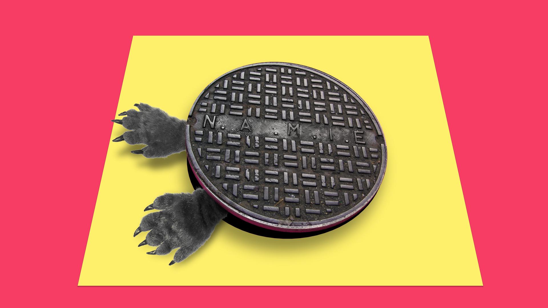 SC090_manhole.jpg