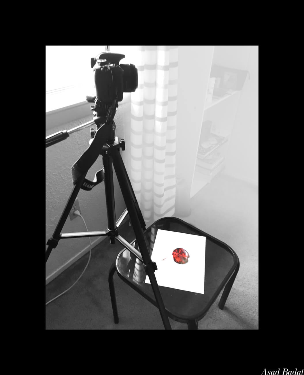 Asad-Badat-Autumn-Leaves-Camera-Setup.jpg