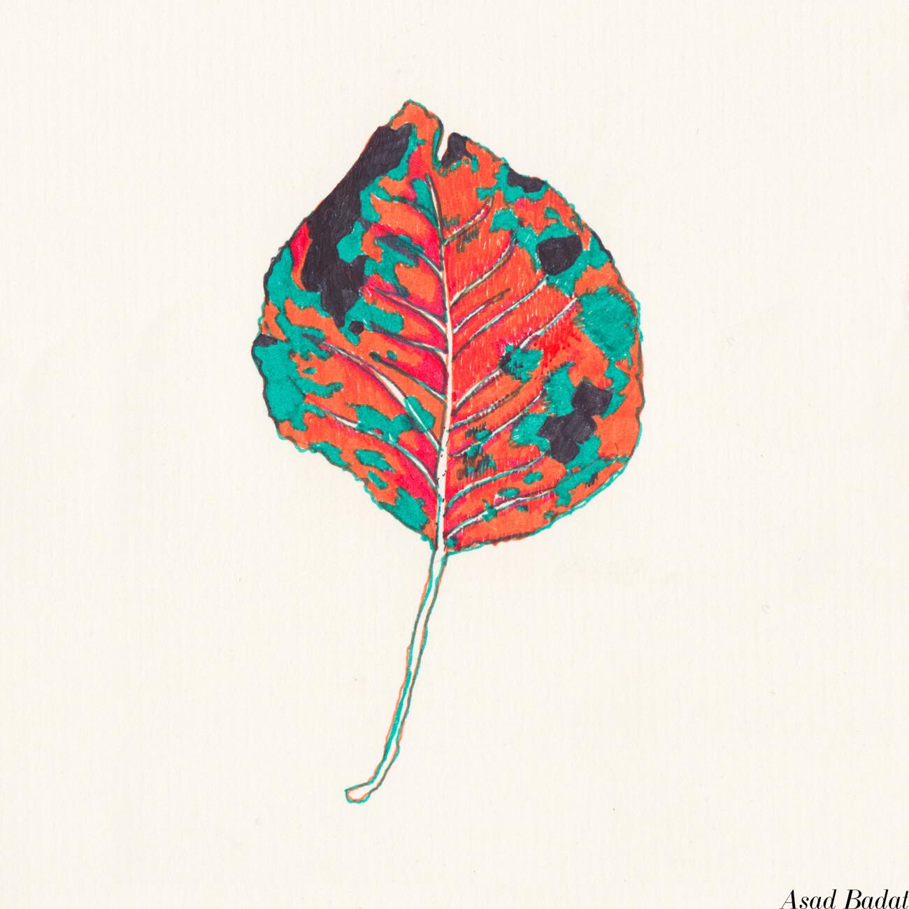 Asad-Badat-Autumn-Leaves-Drawing-1.jpg
