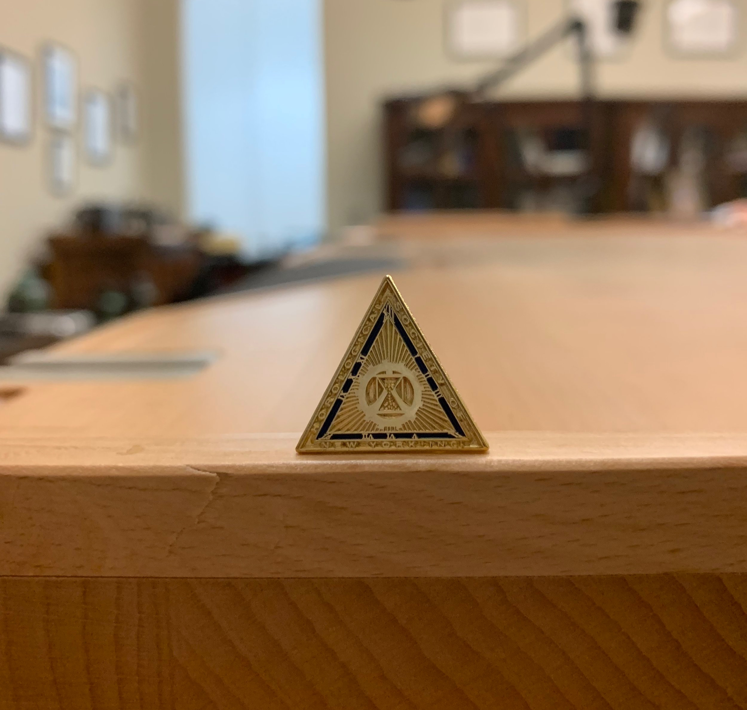 HSNY members receive a lapel pin.