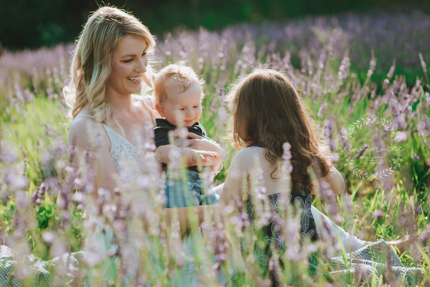Family session in lavender field