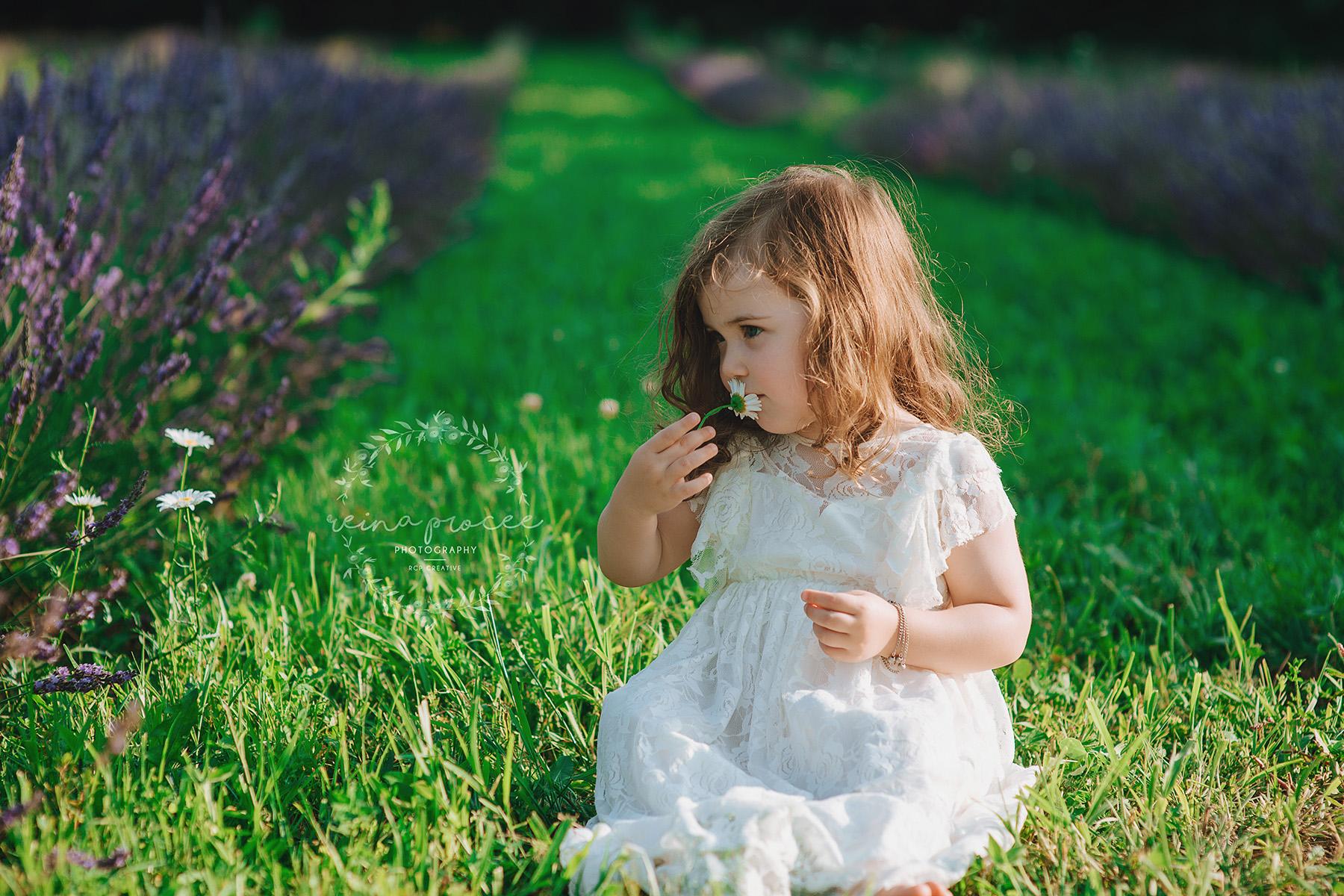 Little girl sitting in lavender