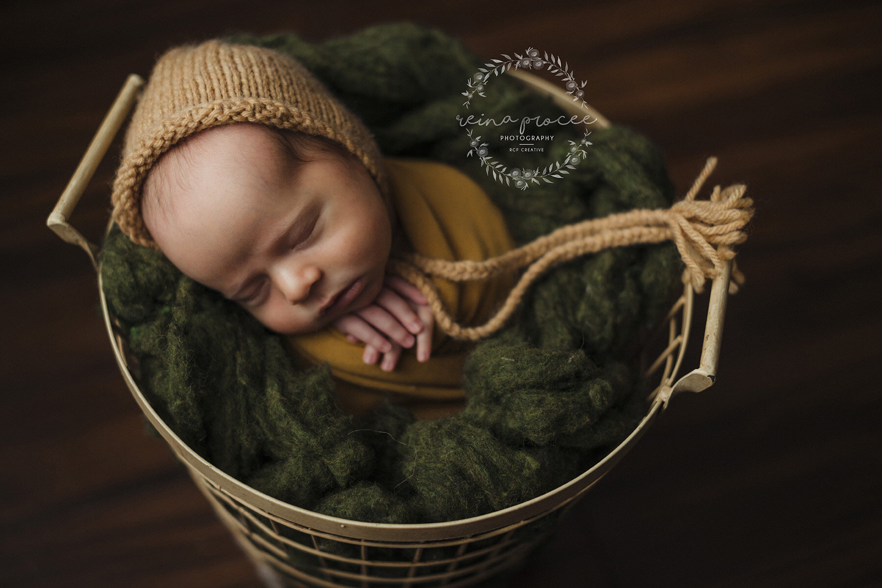 Montreal-newborn-in-basket.jpg