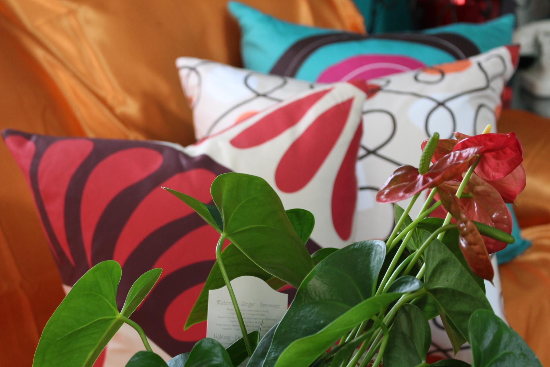 Libby and Chakra pillows