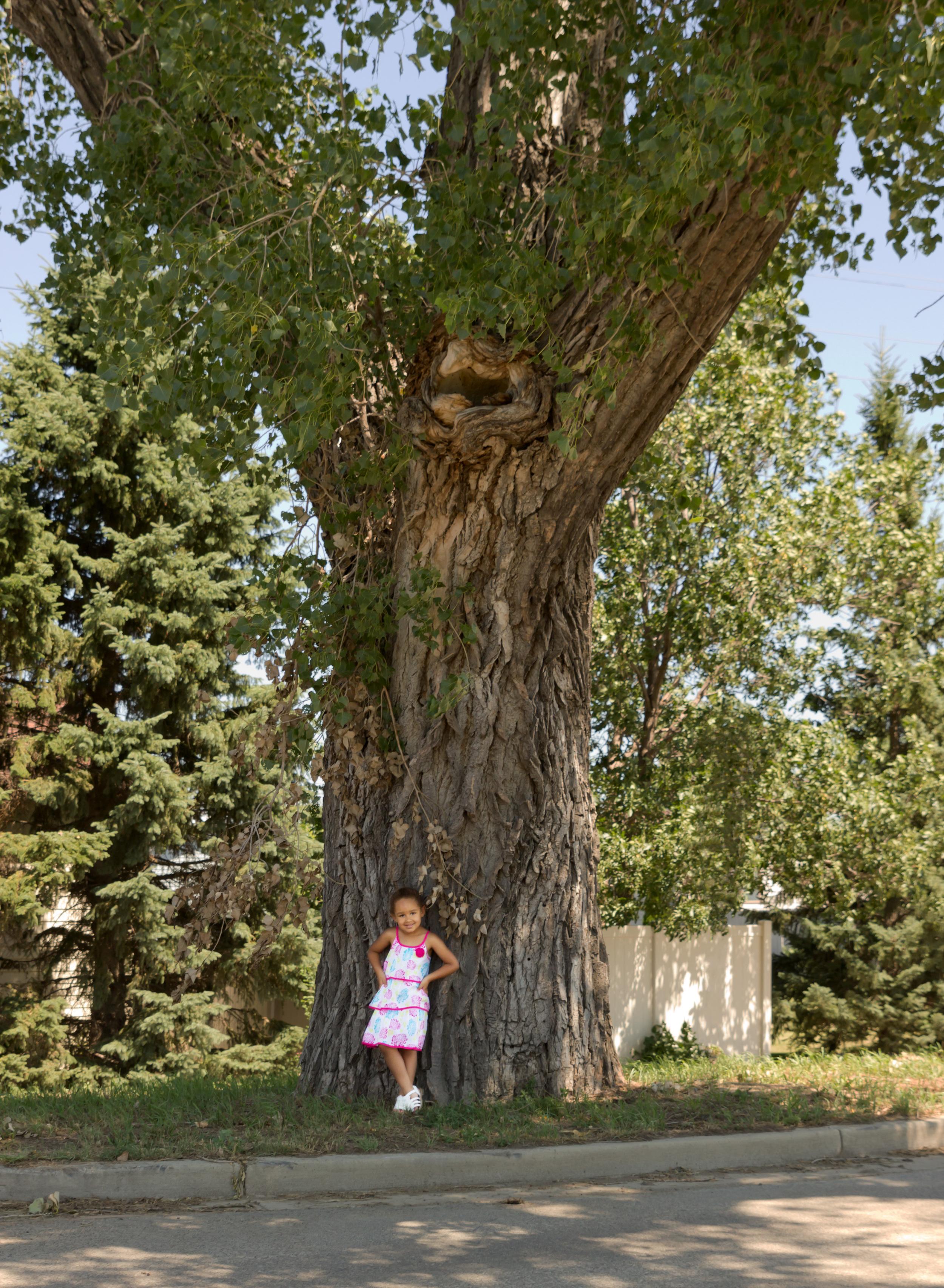 Little girl, BIG tree!