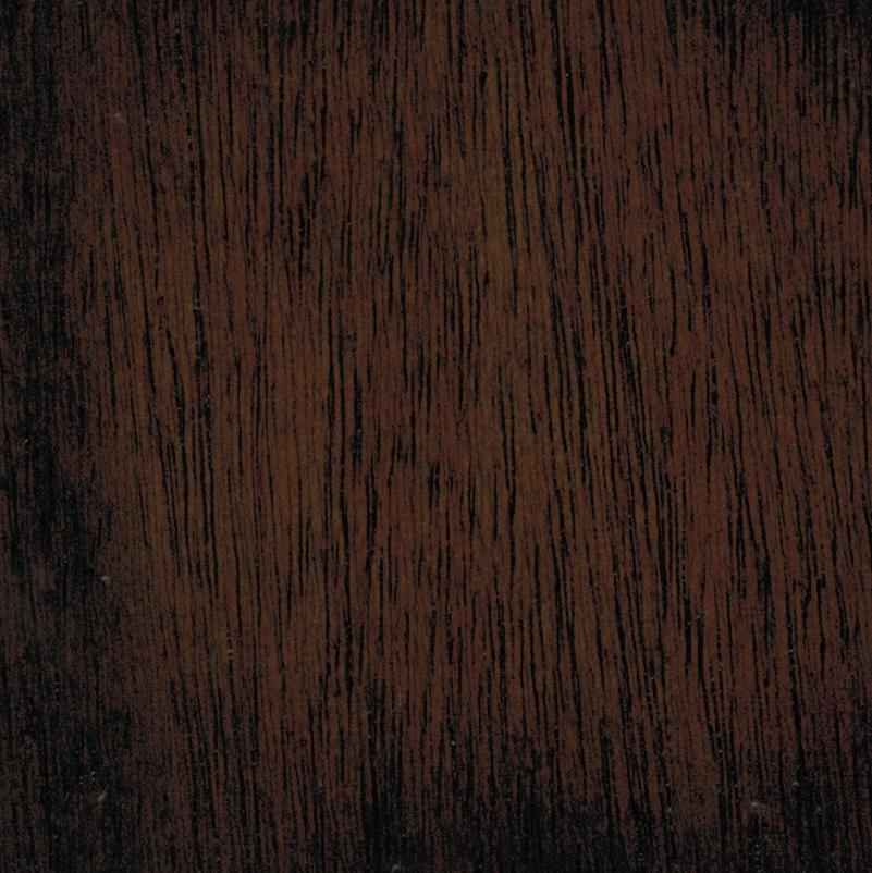 cedro castor.jpg