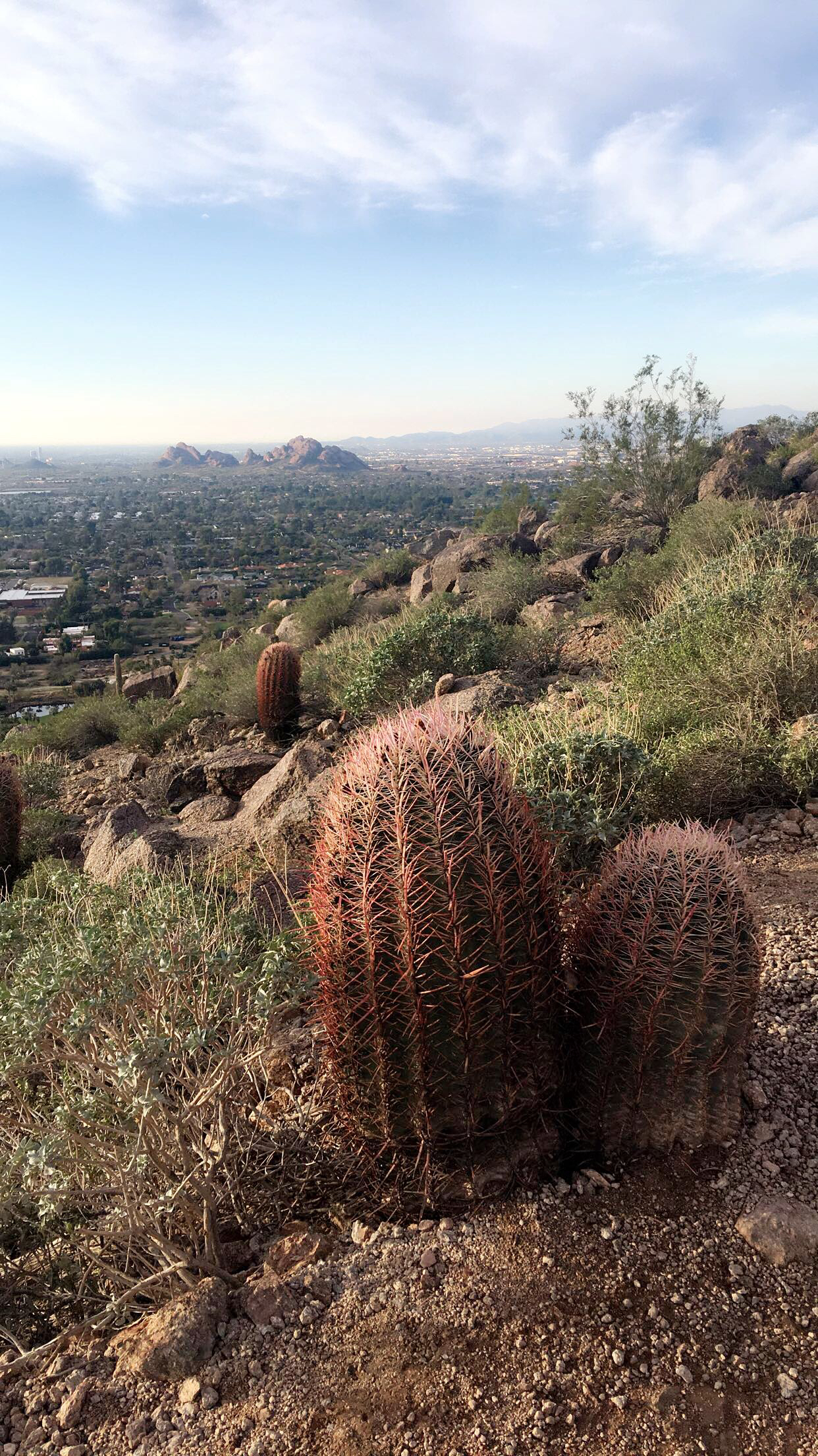 camelback mountain scottsdale