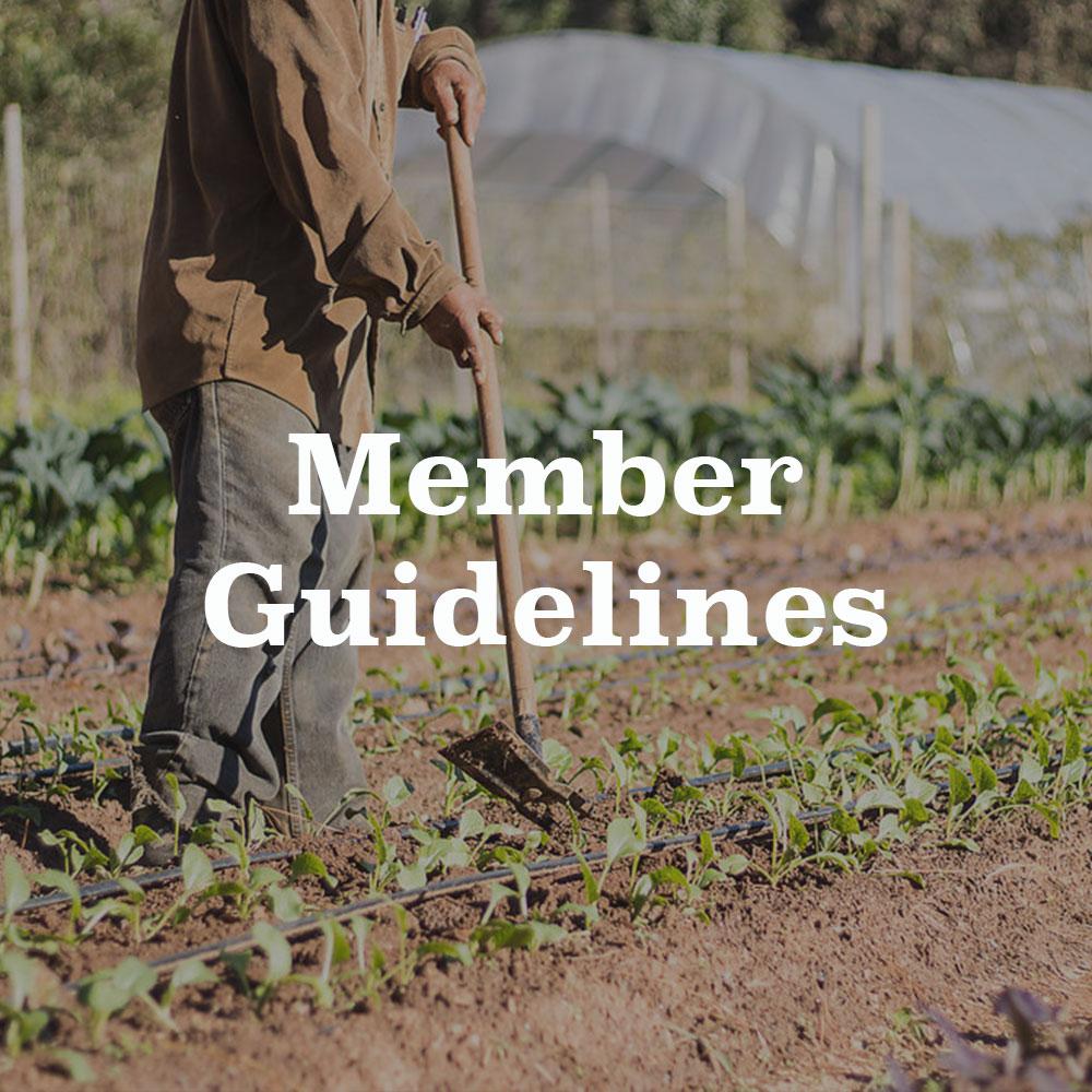 Member-Guidelines.jpg