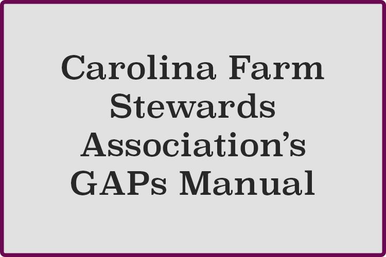 CFSA-GAPs-Manual.png