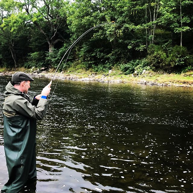 Interesting day on Tweed on Friday with a favorite client. Miraculous change from Thursday. Lower river rose only an inch or two but salmon started running and residents switched on. A grilse caught on the nymphs on upper Tweed mid-morning. Then nipped down to lower river in afternoon, fish on the move and on the take. Second grilse of the day fell to the trusty black and yellow gledswood. Amazing what a change in pressure and promise of rain will do. Those salmon know before we do . . . more rain duly arrived and lifted the river over the weekend #flyfishing #salmonfishing #greysfishing #atlanticsalmon #wondersofnature