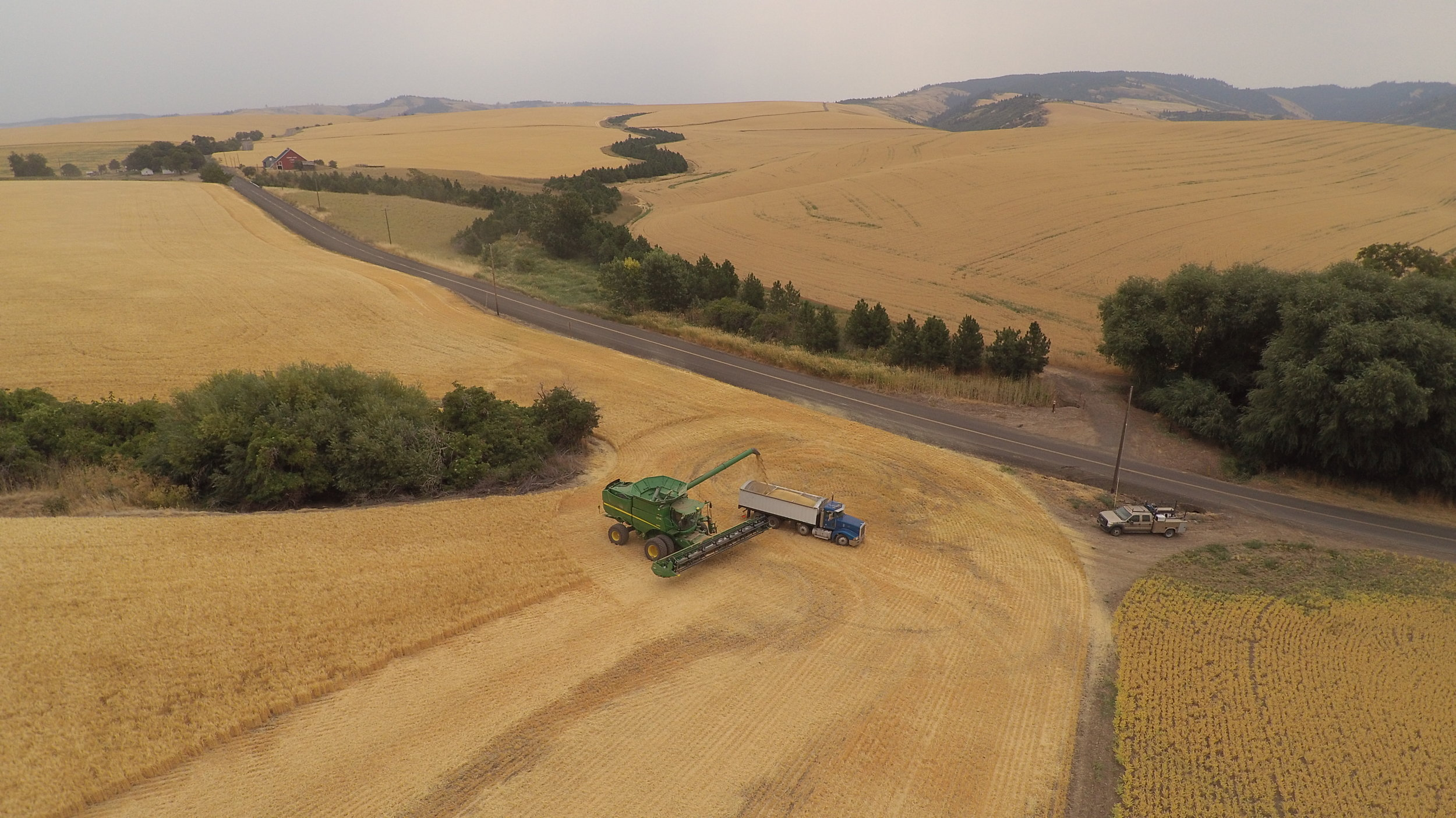 Explore grain lots, services and pricing. - Click here for the details and shoot us an email at sales@mainstemmalt.com to create or join a single-batch group buy.