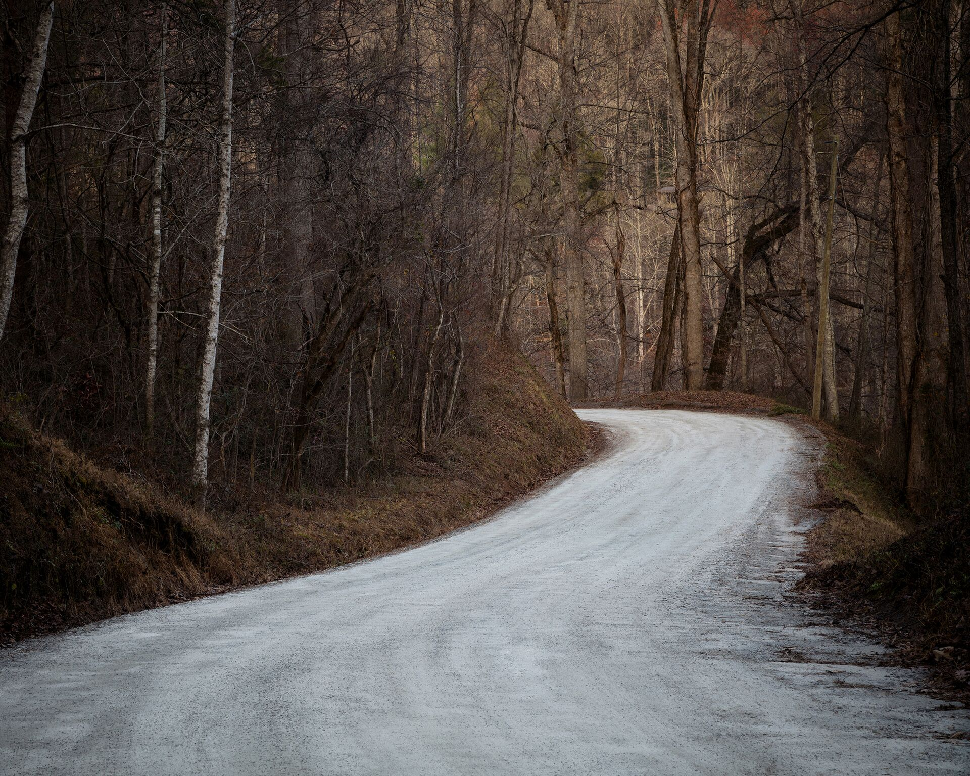 """Untitled - Backroad, Rabun, GA"""