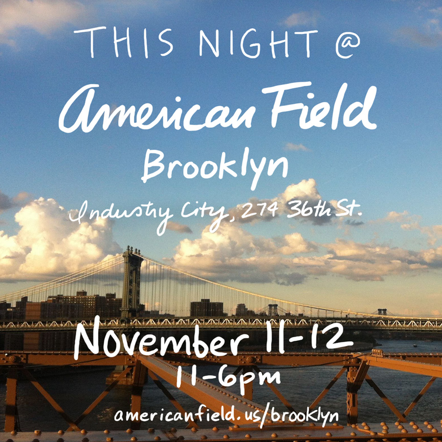 am.field.brooklyn.jpg