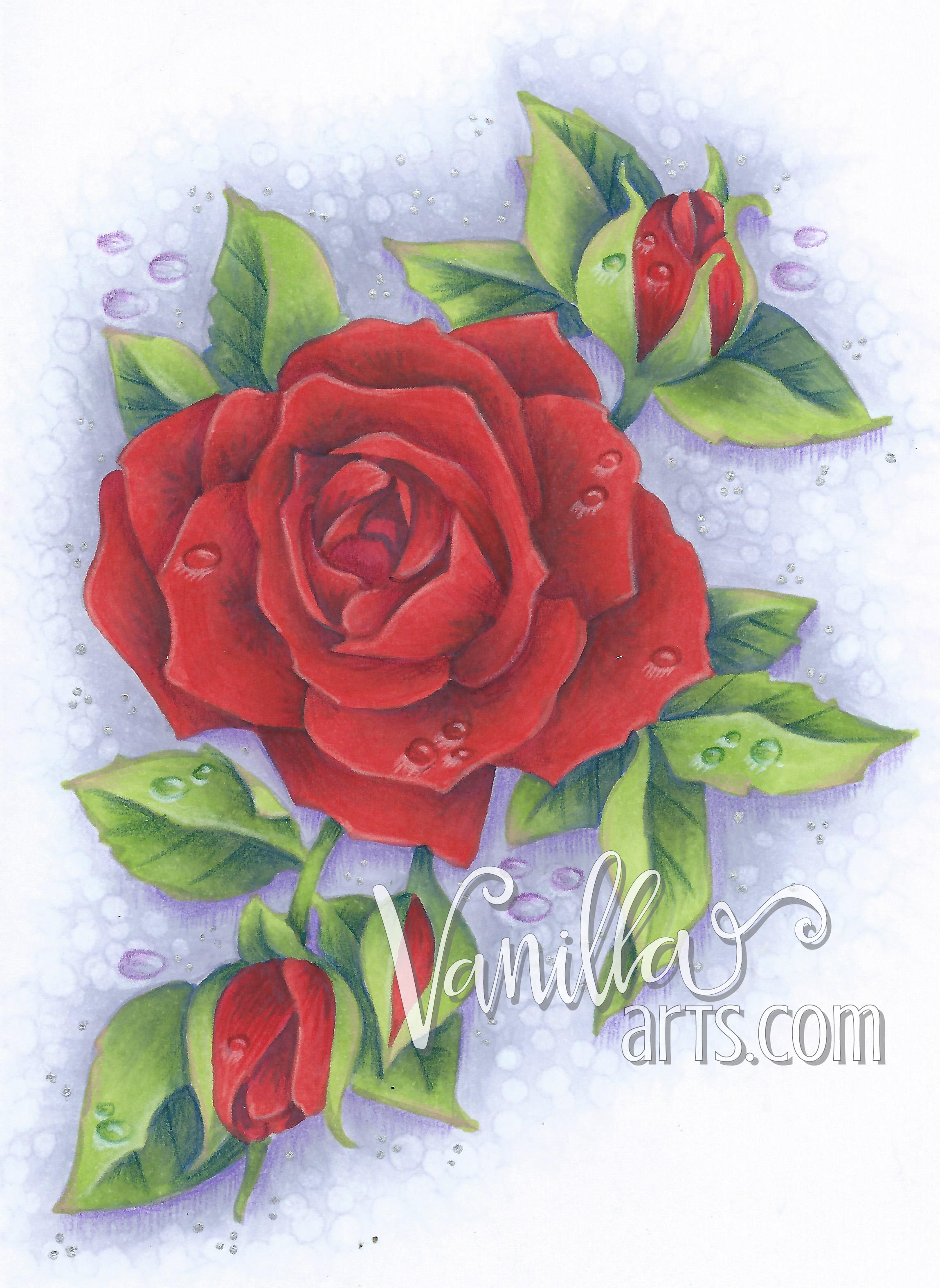 """""""Timeless Rose"""" by Stampendous a lesson in coloring red 