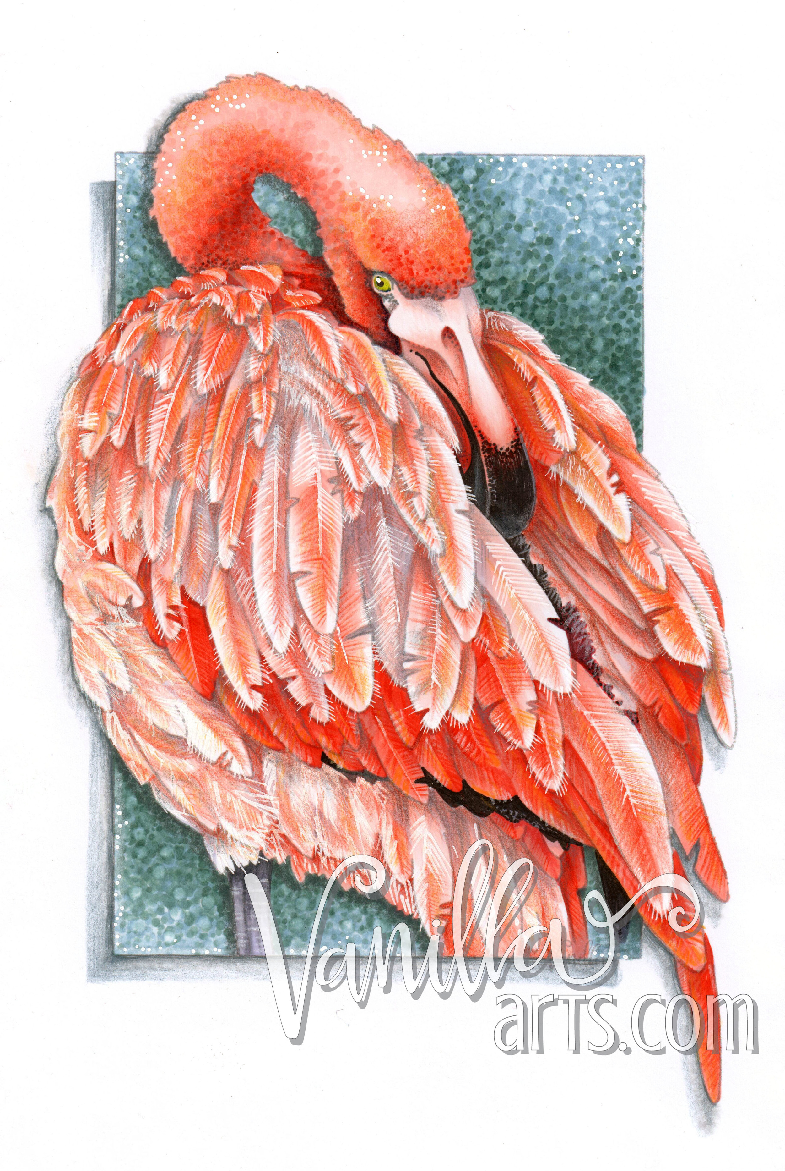 """""""Flamingo Feathers"""" an advanced Copic coloring class 