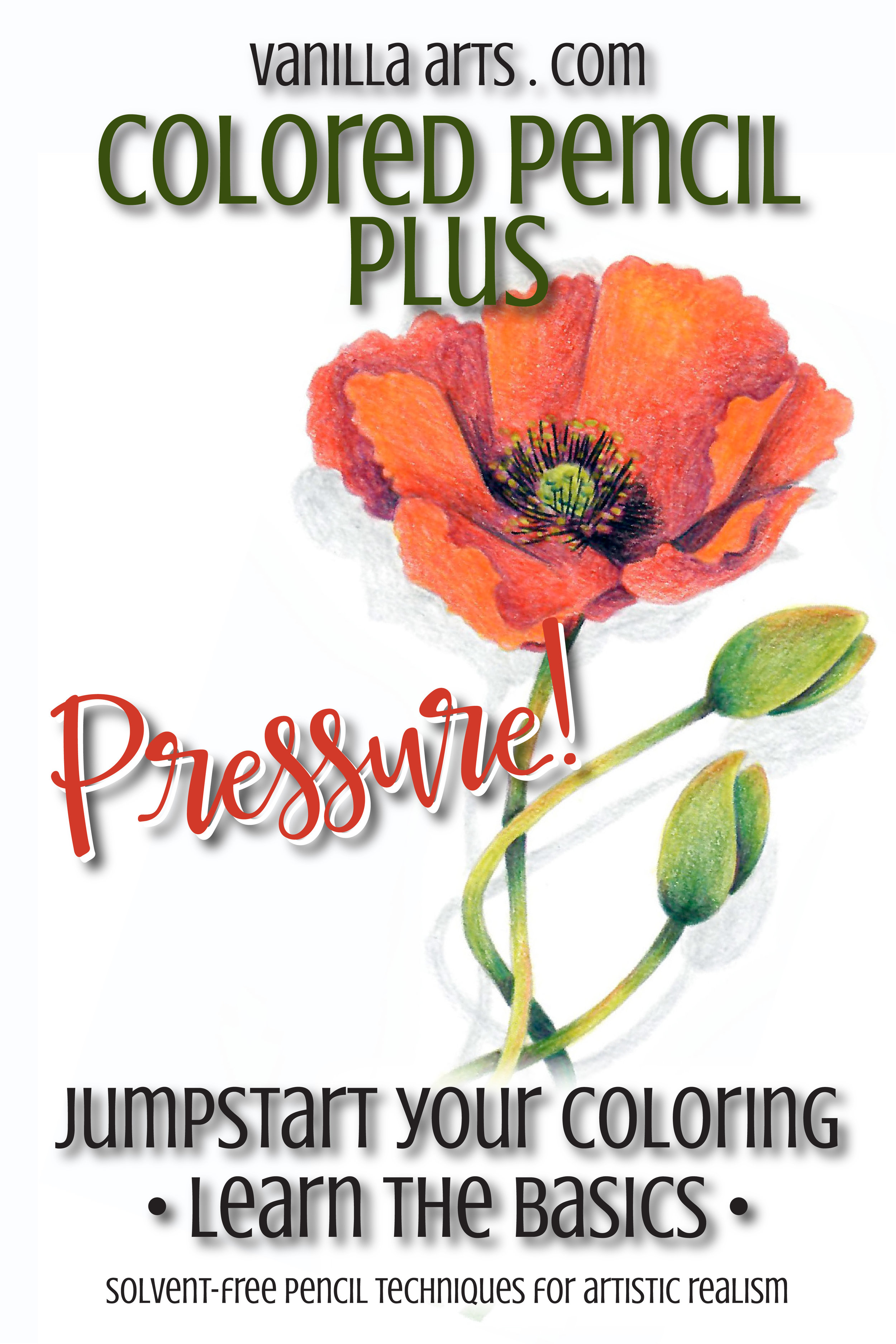 Colored Pencil Plus- 12 week online colored pencil course takes you from beginner to WOW! Learn artistic techniques with solvent-free methods. Begin a lifetime of artistic expression. | ColoredPencilPlus.com
