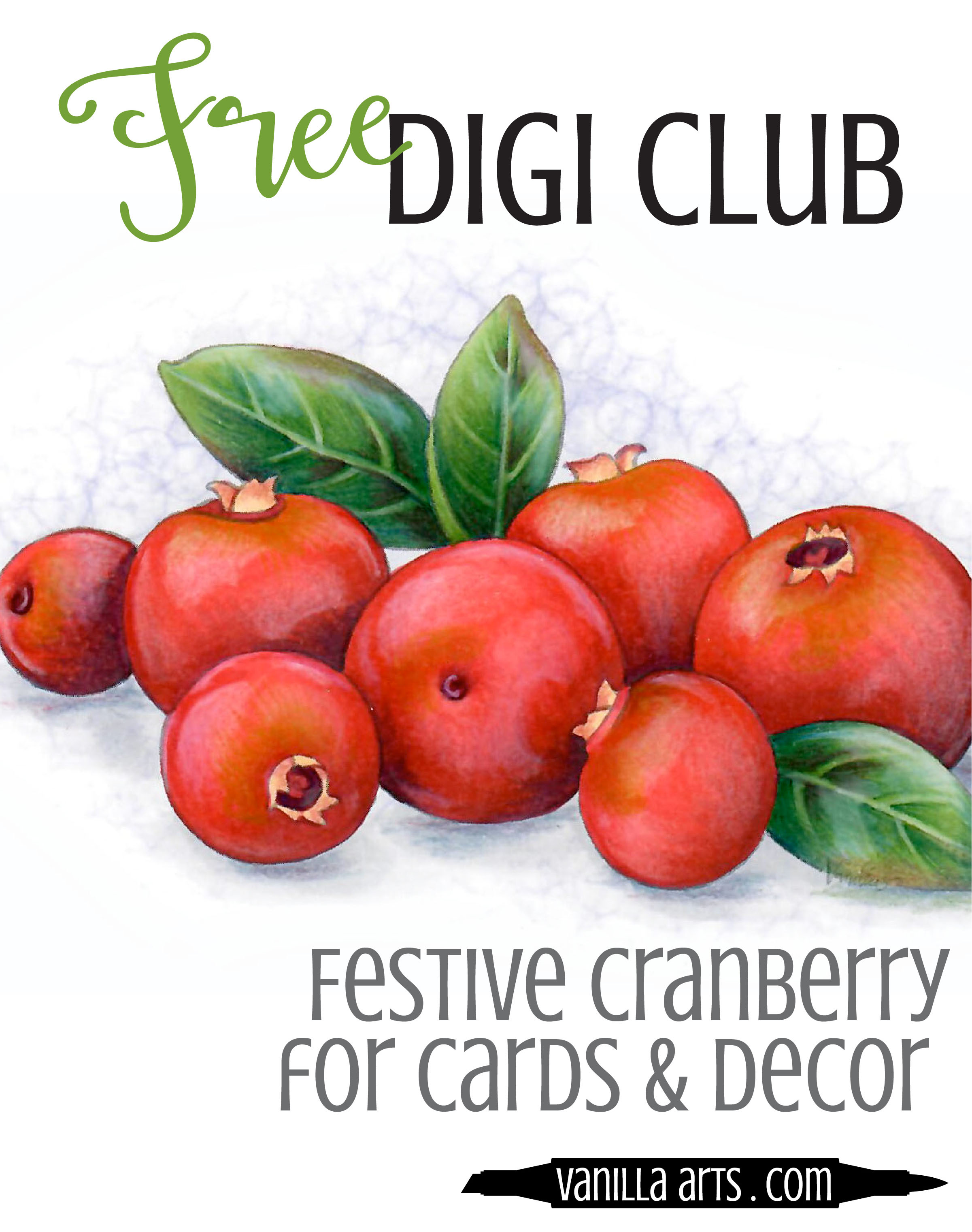 "Get your FREE copy of the ""Festive Cranberry"" digital stamp in November 2017. Join the Free Digi Club for a new stamp every month! 