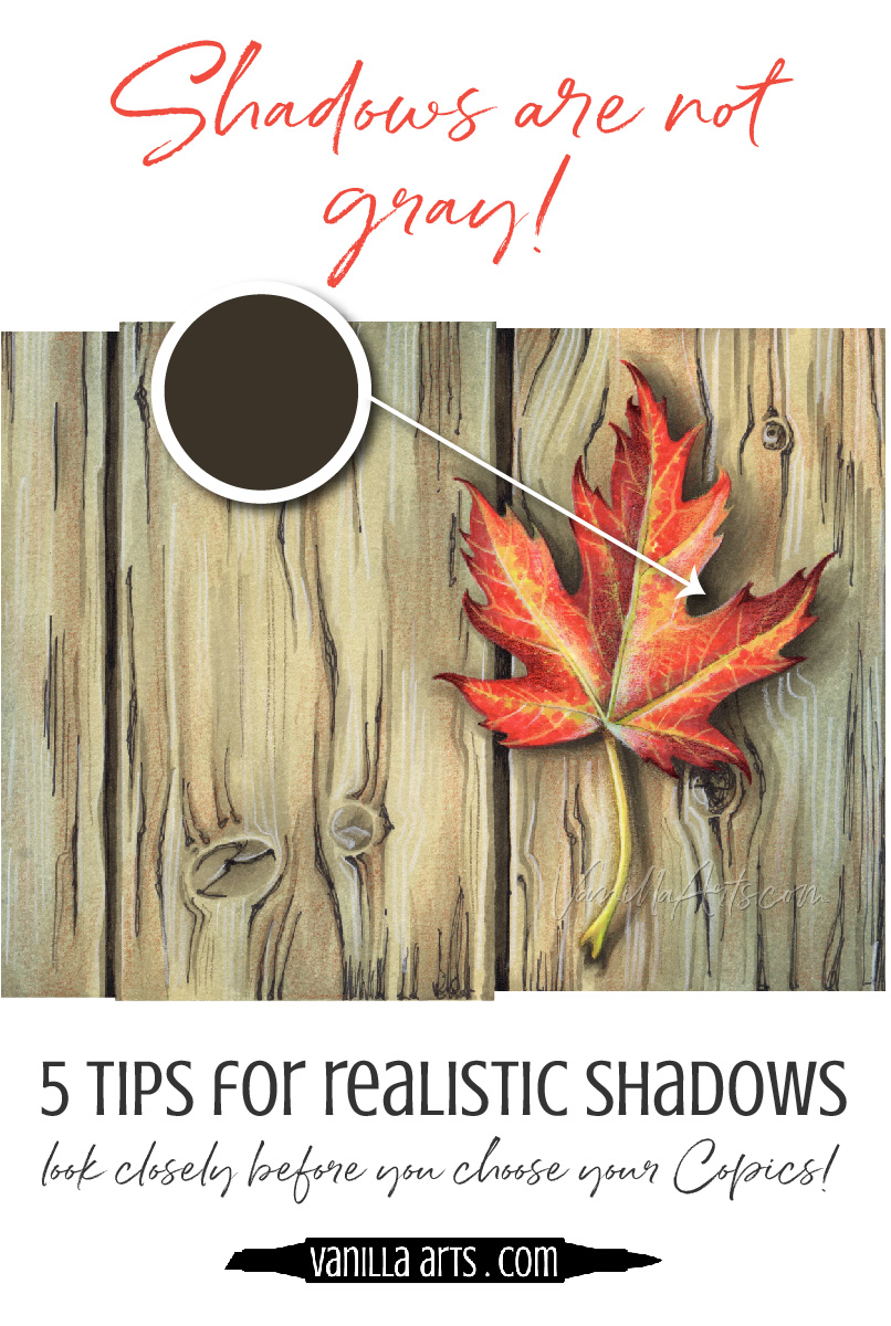 Do you wonder why your shadows look fake? 5 tips to improve your Copic Marker and colored pencil projects by coloring beyond your assumptions. | VanillaArts.com | #copicmarker #coloredpencil #coloring #howtocolor #realisticcoloring