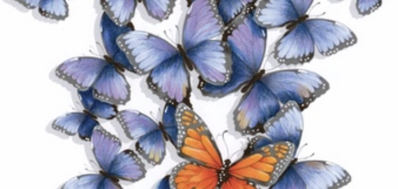 "Flutterby -  a 1.25 hour online class that introduces you to the Push & Pull method for creating depth with layered objects. Further practice for basic flicking plus an introduction to strengthening depth and dimension with ""magic"" colored pencils."