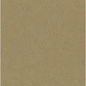 Bazzill Classic Cardstock in Kraft.jpg
