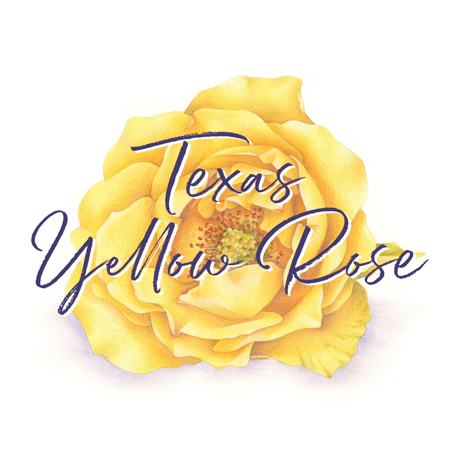 Texas Yellow Rose is an intermediate/advanced level Copic & Colored Pencil VanillaArts.com Digital Stamp & Retreat Booklet