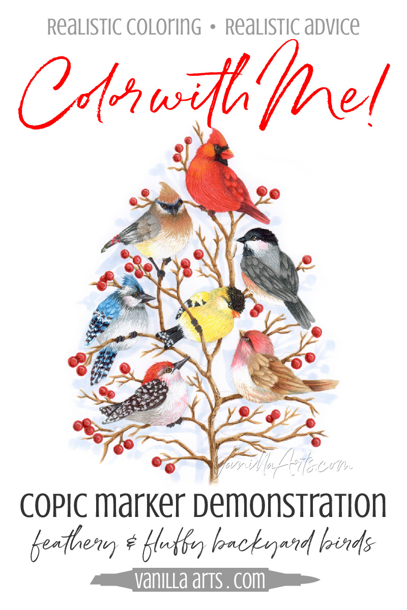 "FREE Copic Marker demonstration video. Tips for coloring cute, fluffy, and feathery birds with Copics and colored pencils. Project uses Stampendous ""Bird Tree"" stamp. 