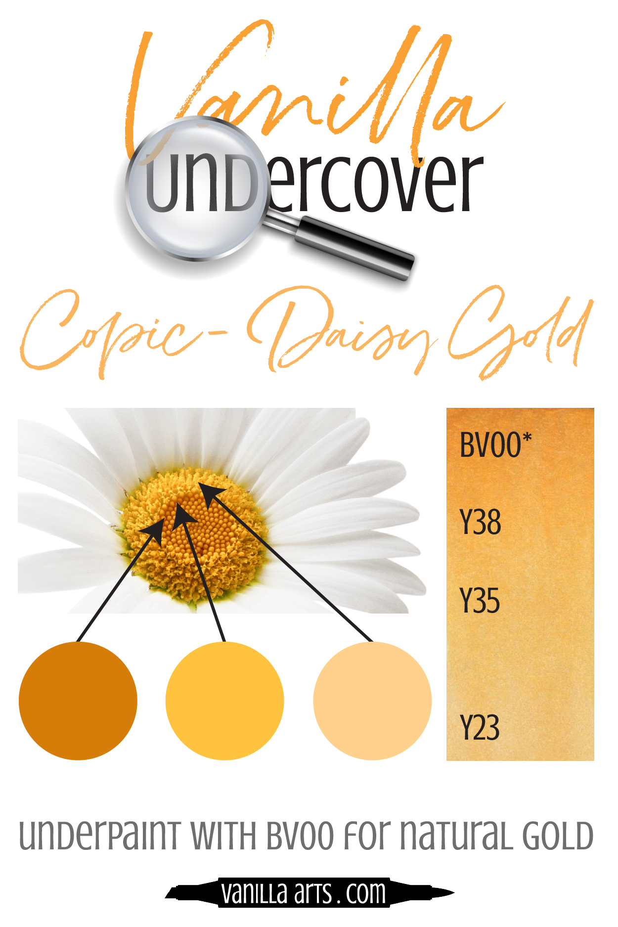 Add dimension and realism by underpainting with Copic Markers! Use BV00 underneath your Y (Yellow) blending combinations to capture the look of natural Gold.   VanillaArts.com   #copicmarker #realisticcoloring #underpainting