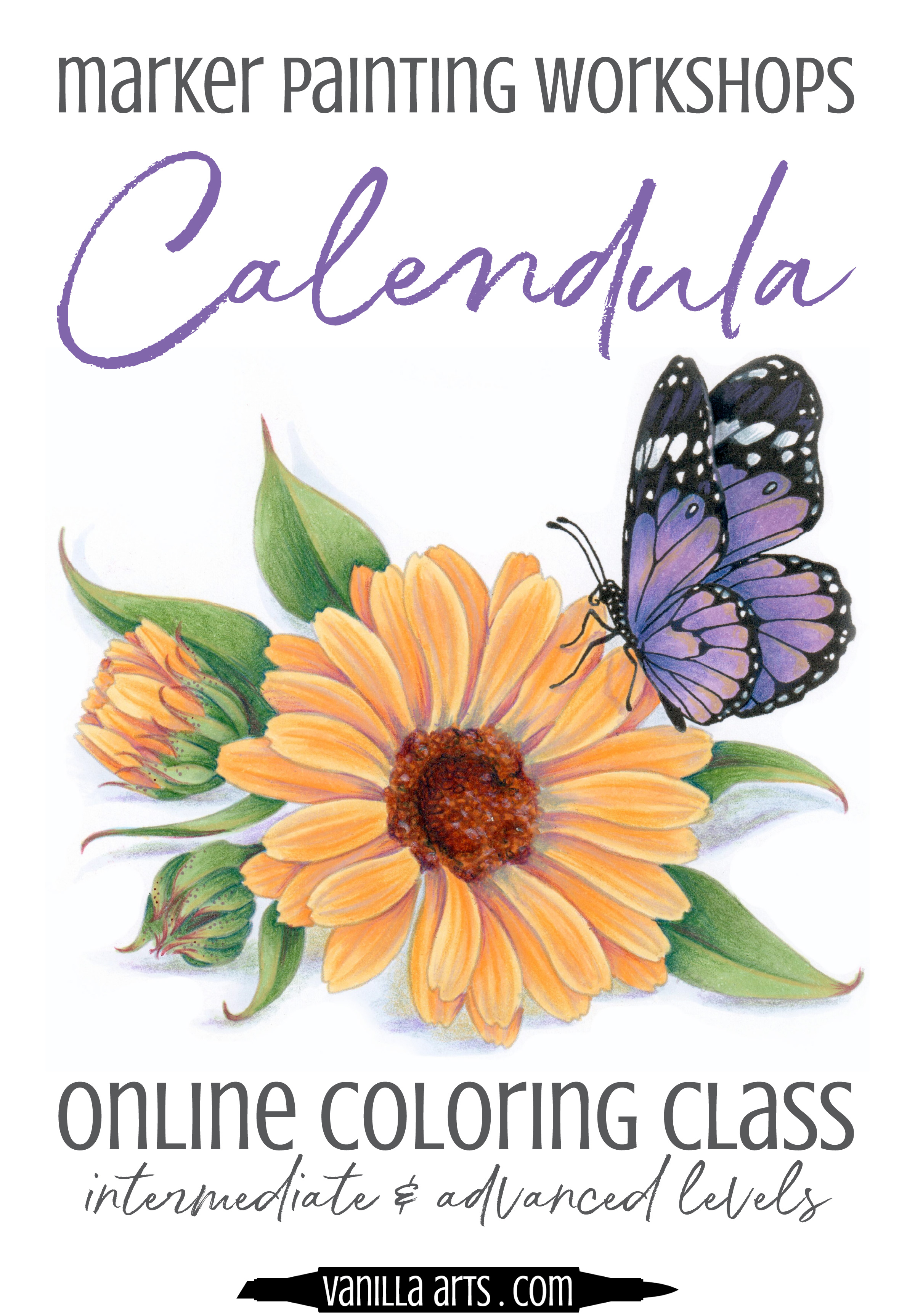 Marker Painting Workshop classes offer artistic challenges for intermediate to advanced colorers. Learn how to overpaint for more realistic depth and shade on yellow flowers. | MarkerPainting.com | #copicmarker #coloredpencil #coloring #howtocolor