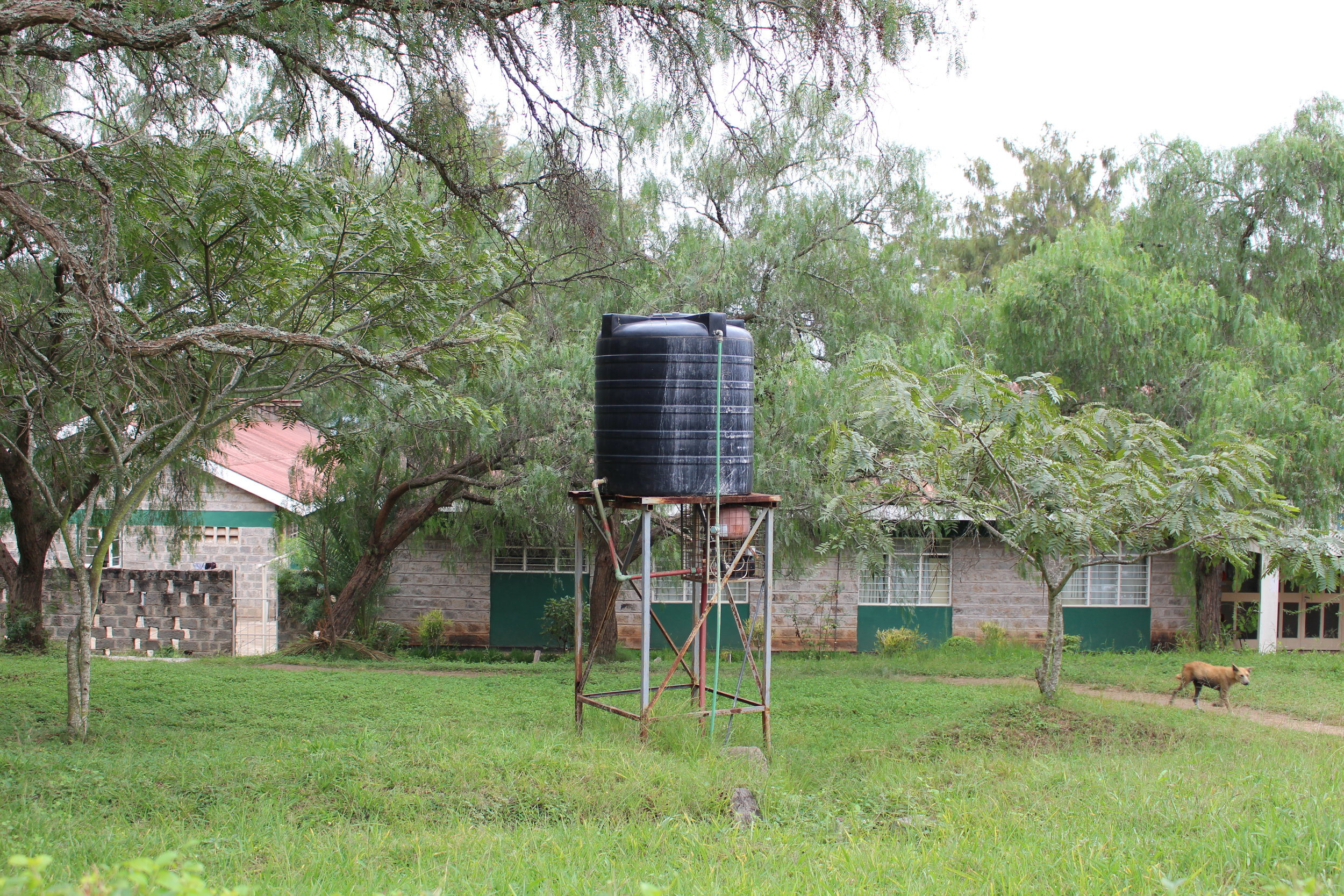 A current water source at Daystar University in Nairobi, Kenya.