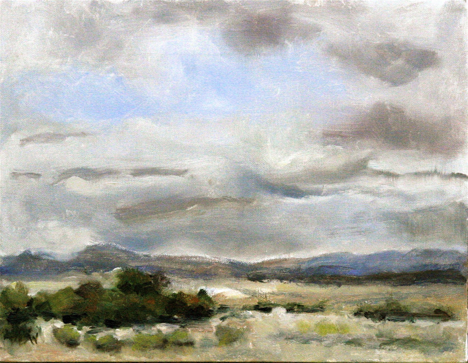 Southern Colorado Desert