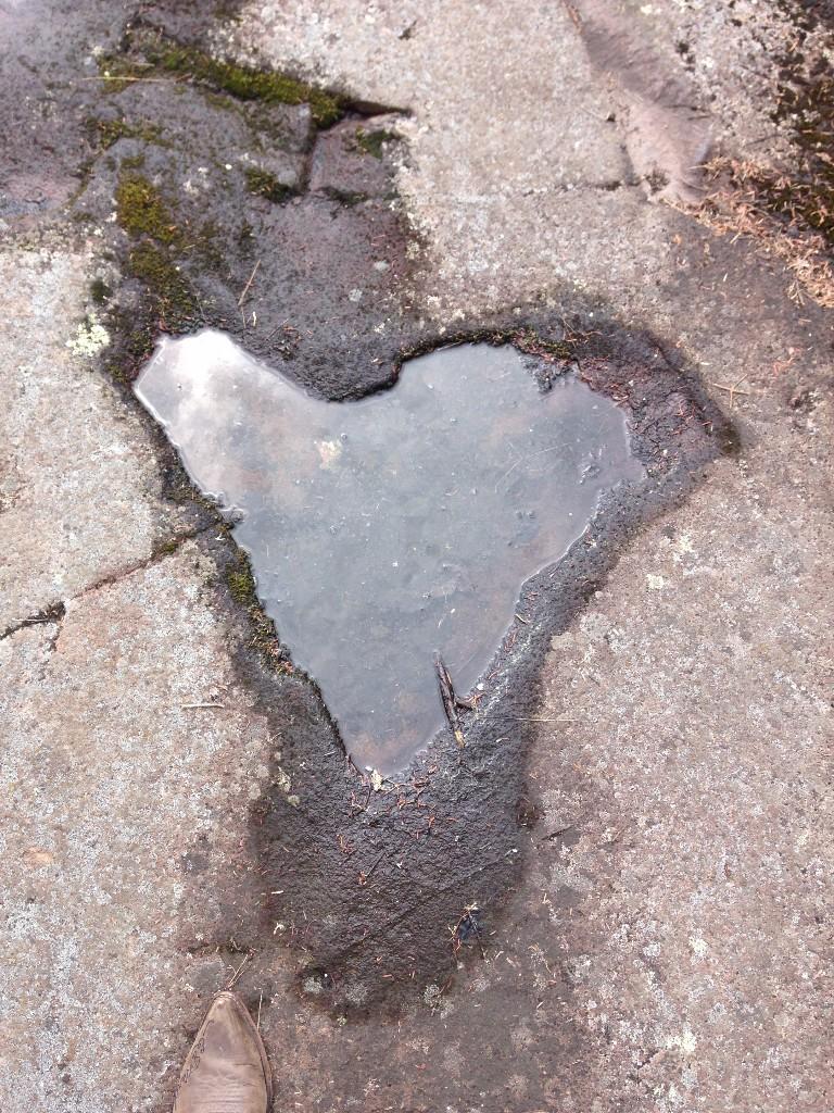 heart 9.jpg