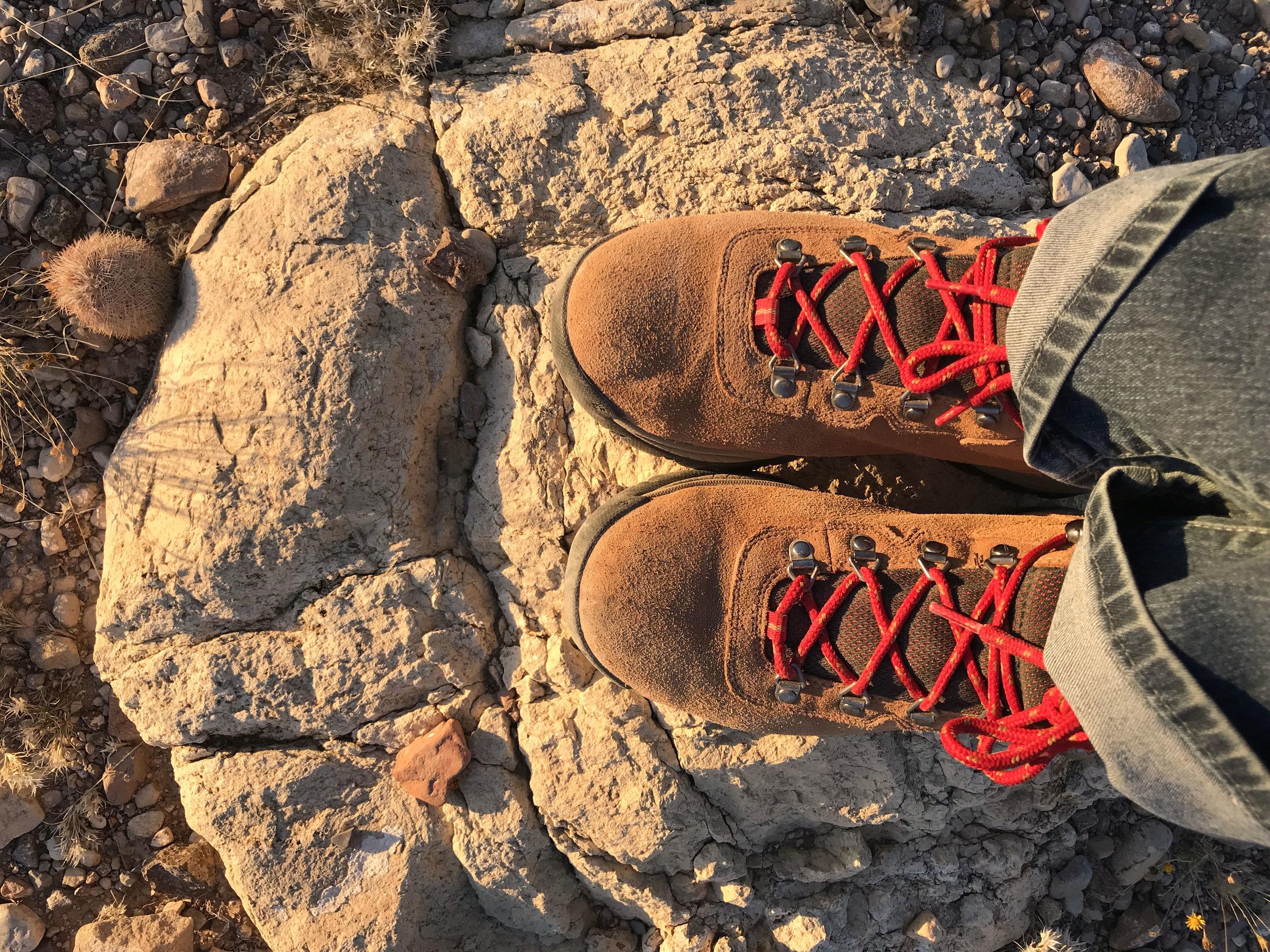 6 boots.JPG