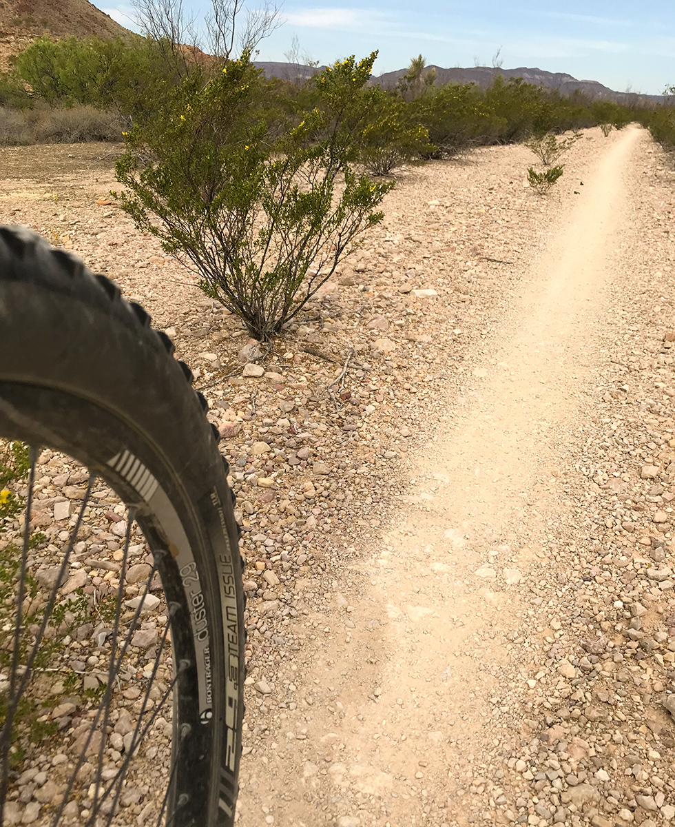 Camino Viejo Trail 2 web size.jpg