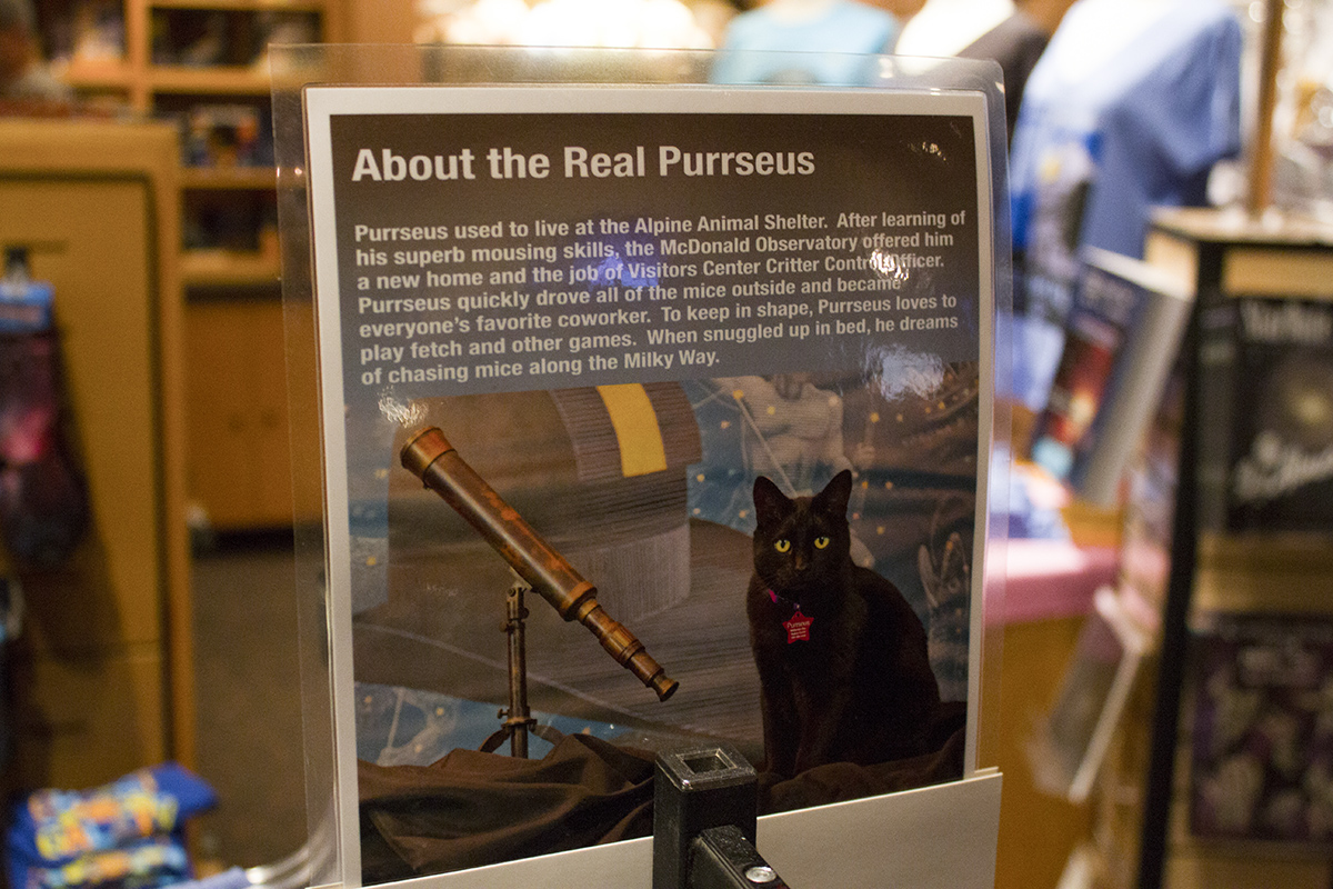 The Real Purrseus story, found in the MacDonald Observatory gift shop
