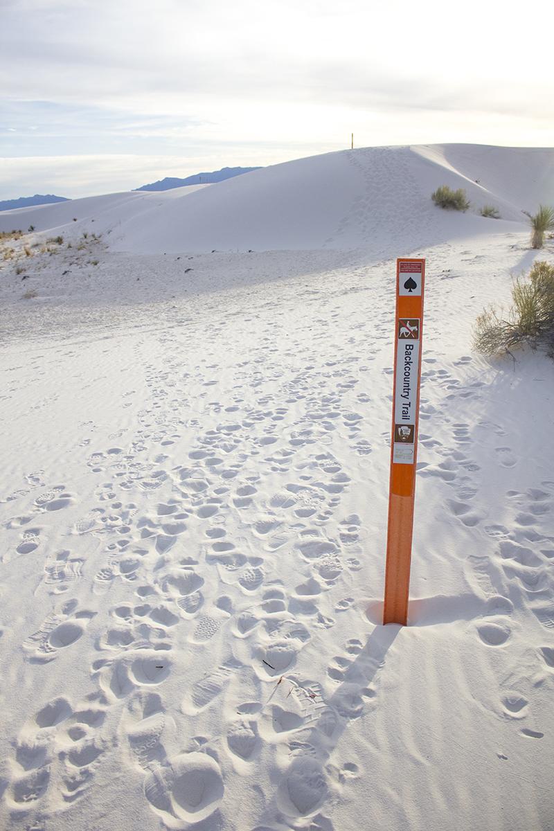 white sands pole blog websize.jpg