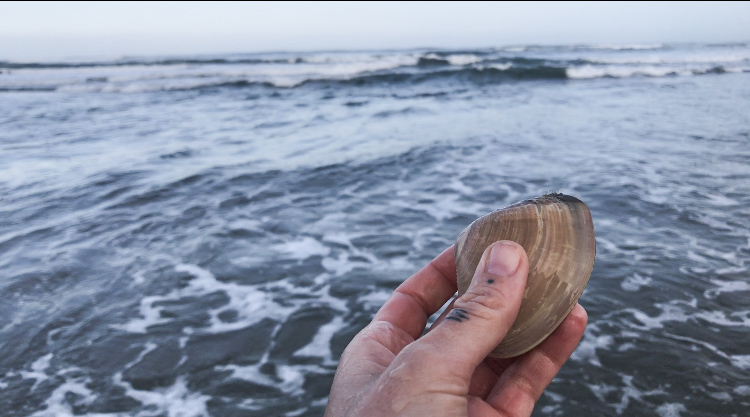 My first clam!!!
