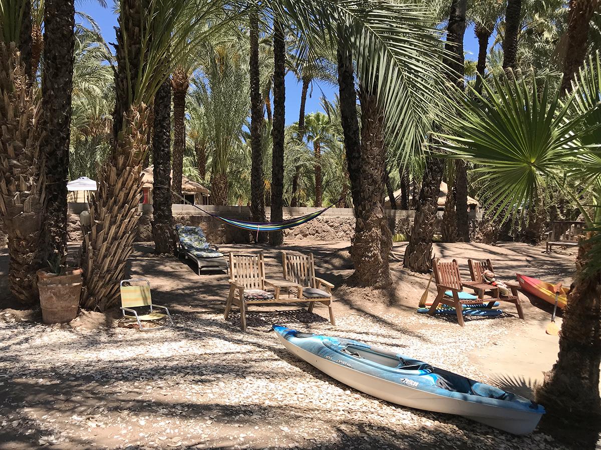oasis kayak websize.jpg