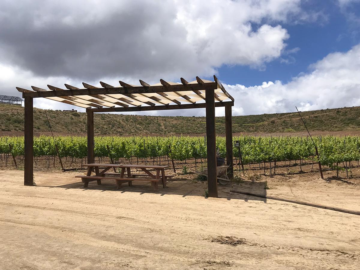 GV CG vineyards websize.jpg