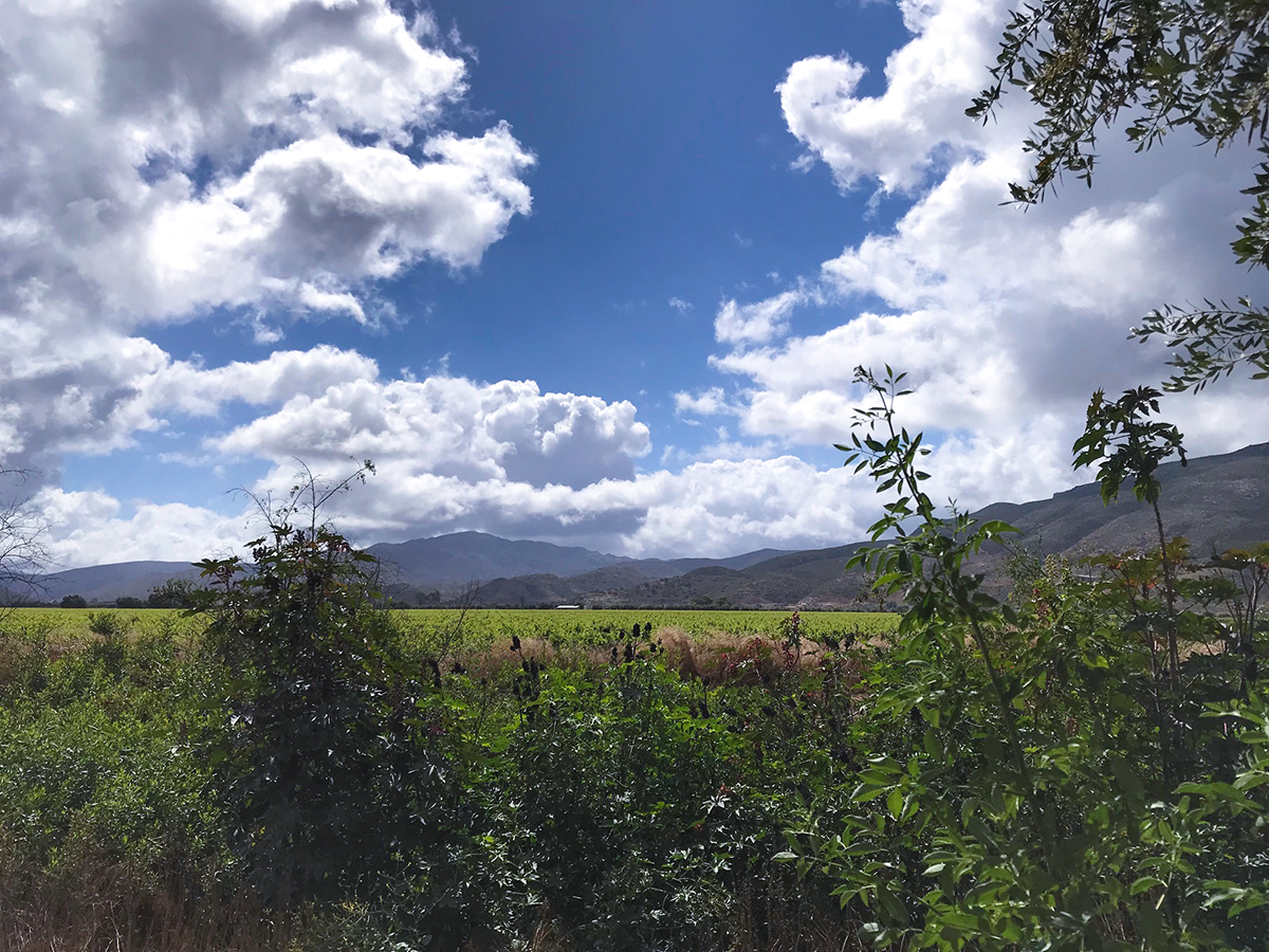 Picture perfect view of Guadalupe Valley and her majestic mountains.