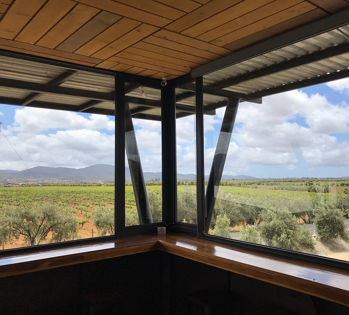 View of the mountains, vines, and utter beauty from the Torres Alegre tasting room.