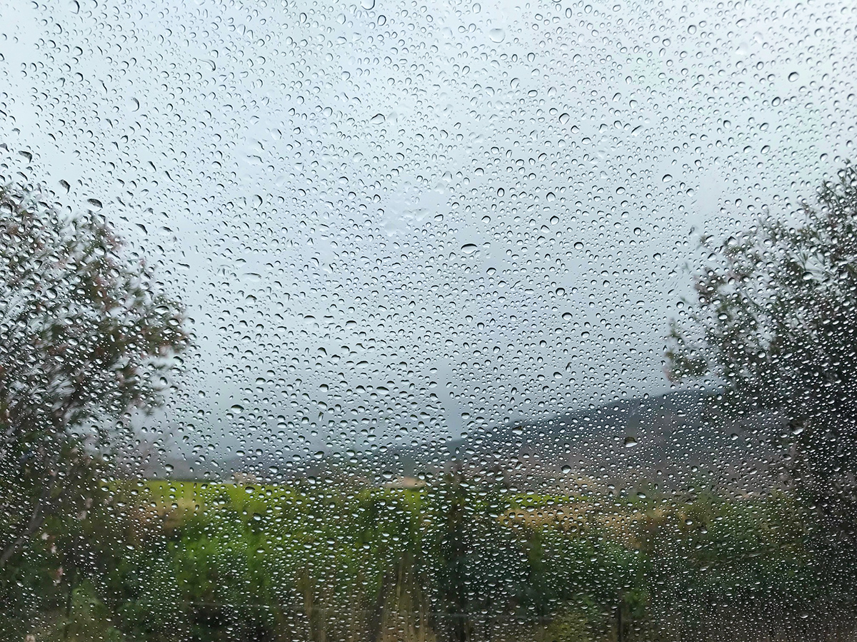Waking to morning rain. The Baja was crying as we said goodbye.