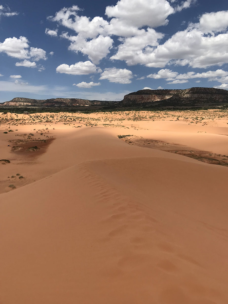 View from the top of the Coral Pink Sand Dunes.