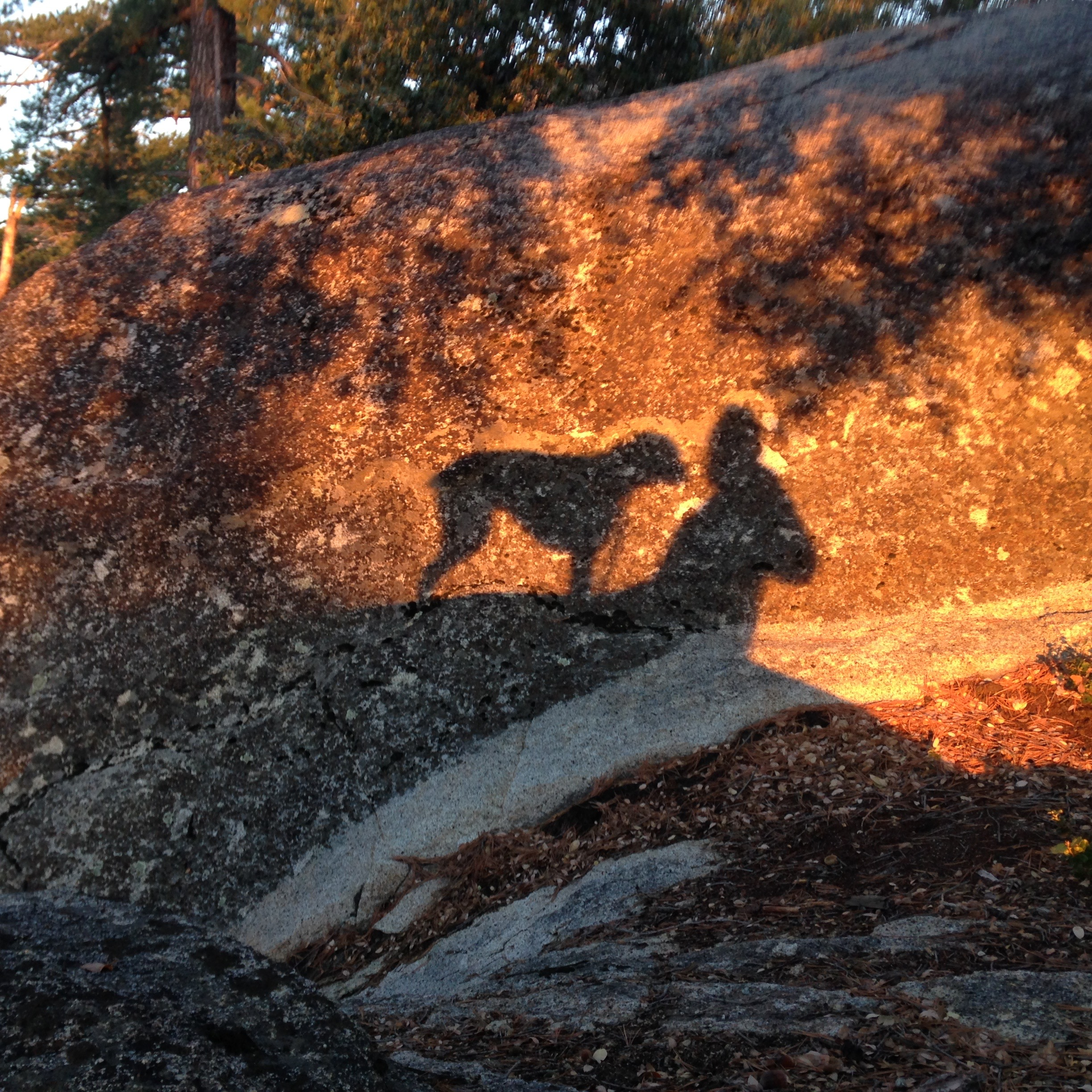 At sunset in the SoCal mountains. Best friends forever!