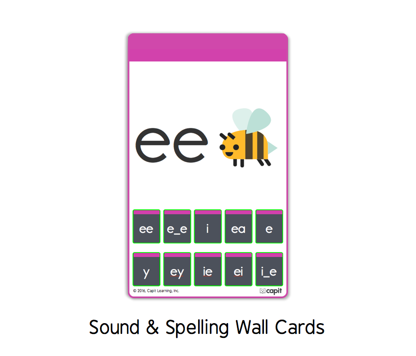 15 Sound & Spelling Cards.png